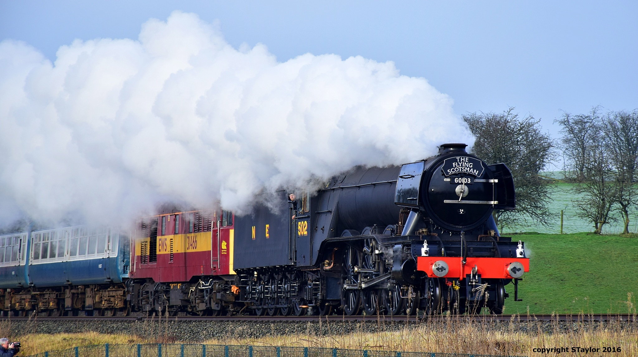 Flying Scotsman  by Steve Taylor