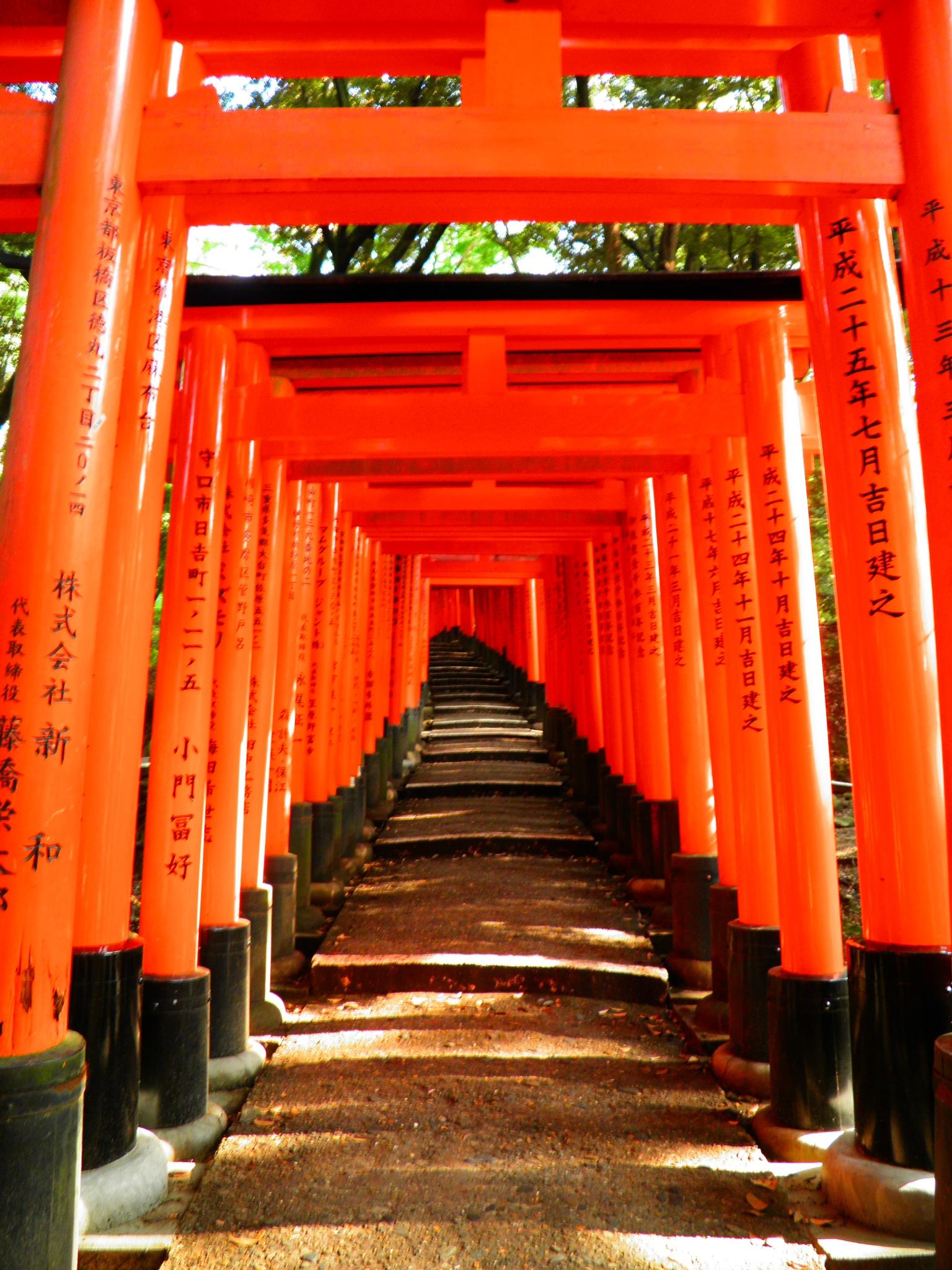 Fushimi Inari Shrine by RToton