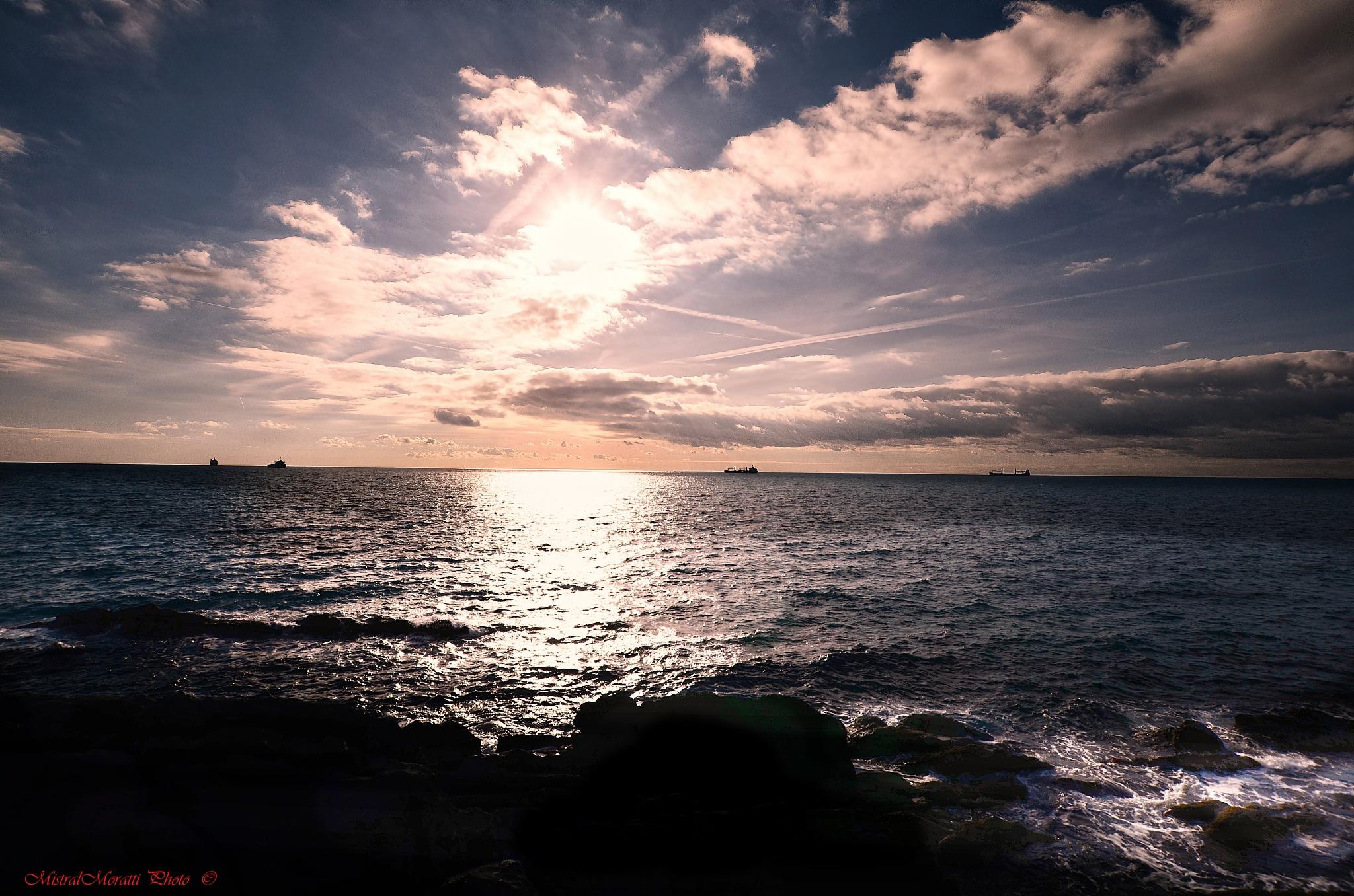 marine backlight by Mistral Moratti
