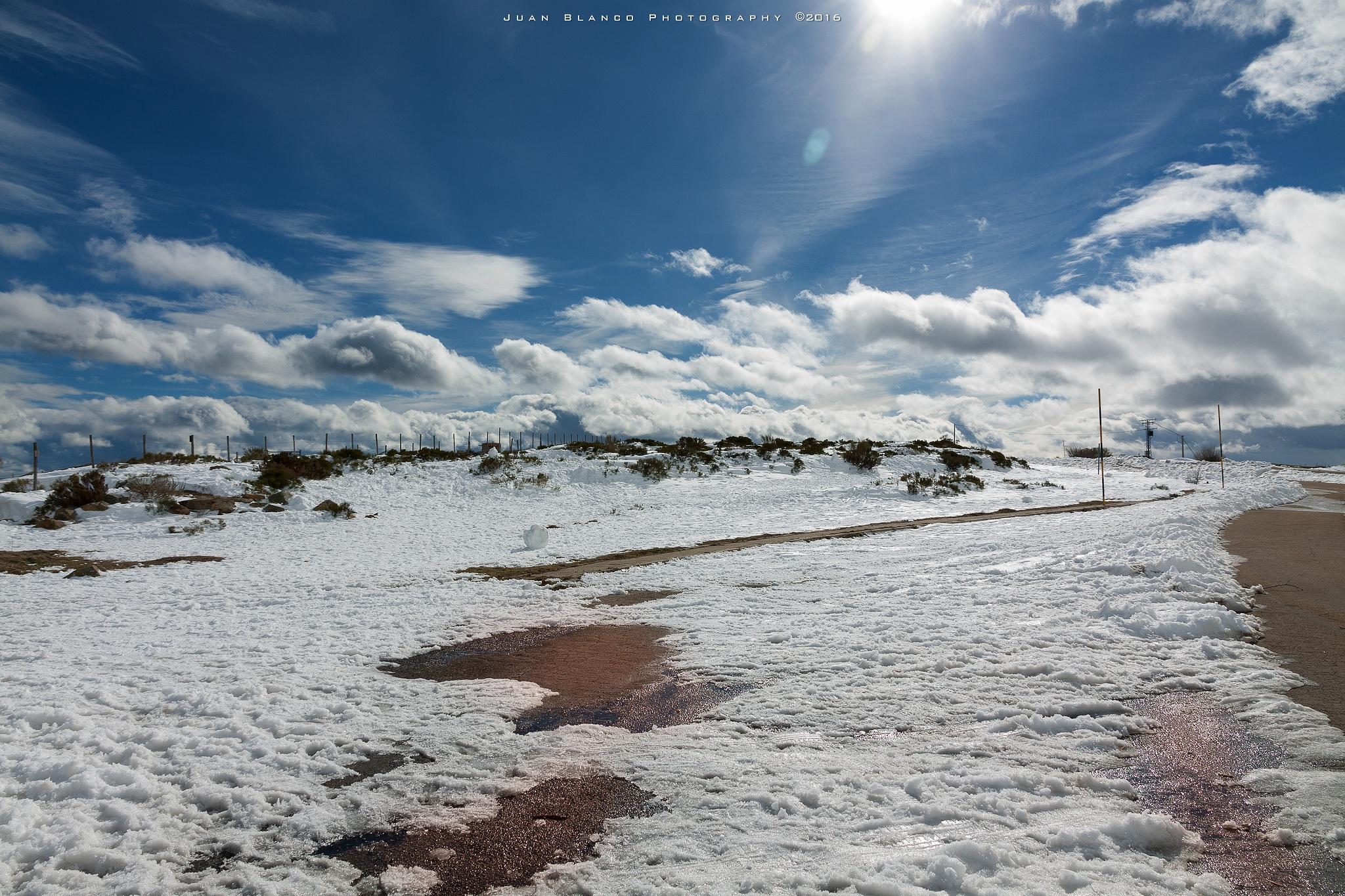 Golobar   Brañosera   Palencia   2016 by JuanBlancoPhotography