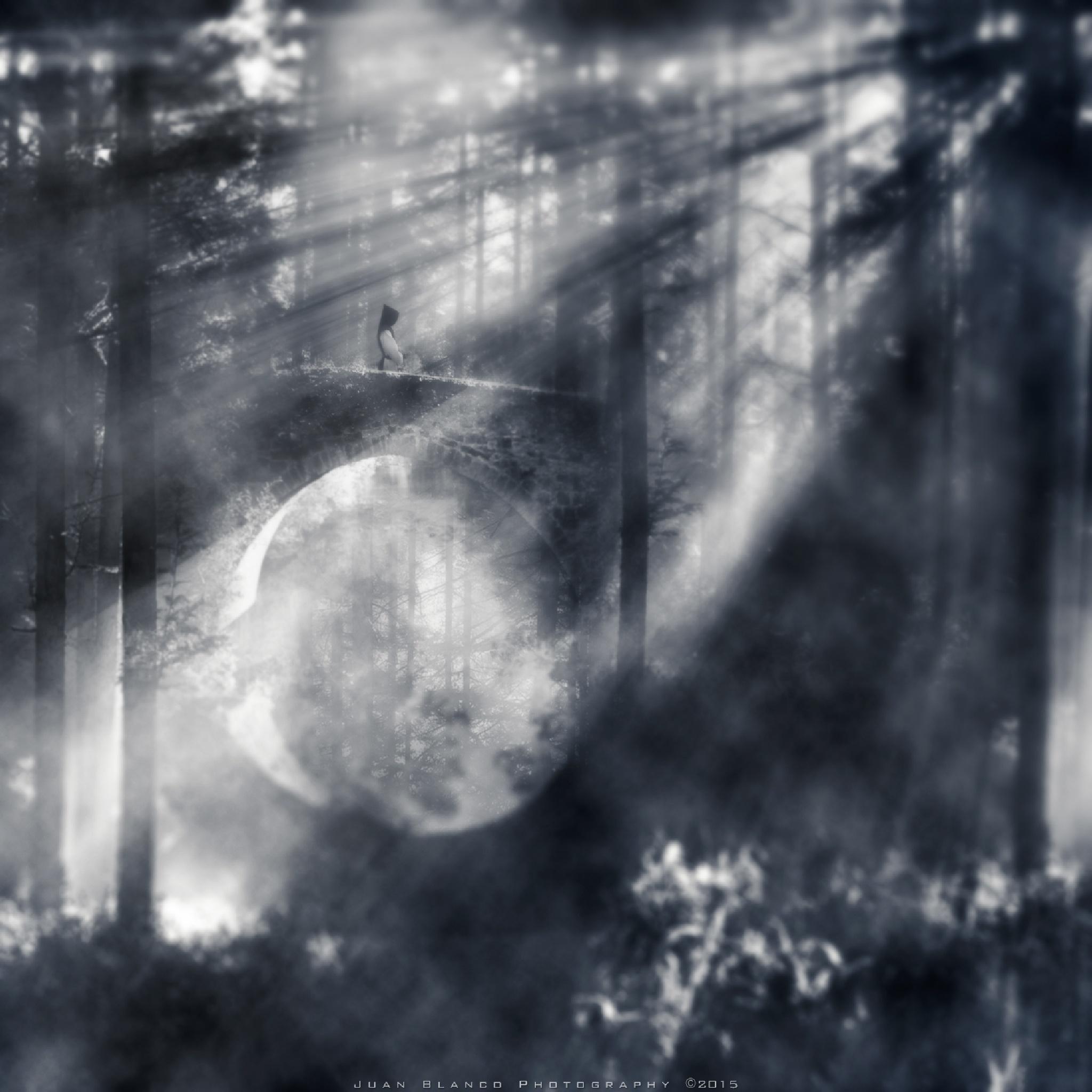 """The Bridge"" by JuanBlancoPhotography"