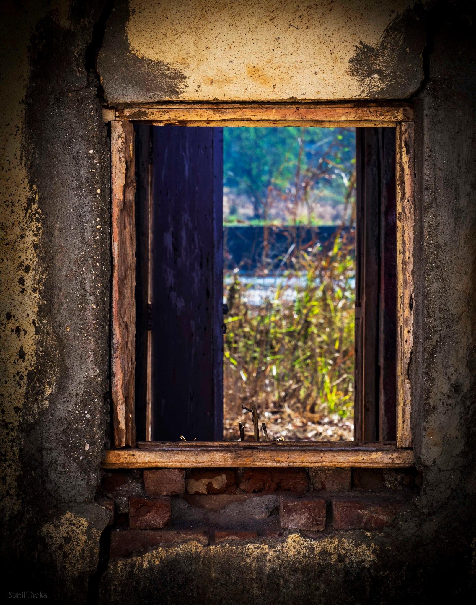Window  by Sunil Prabhakar Thokal