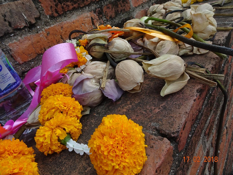 Flower for prayer by fragranceumlee