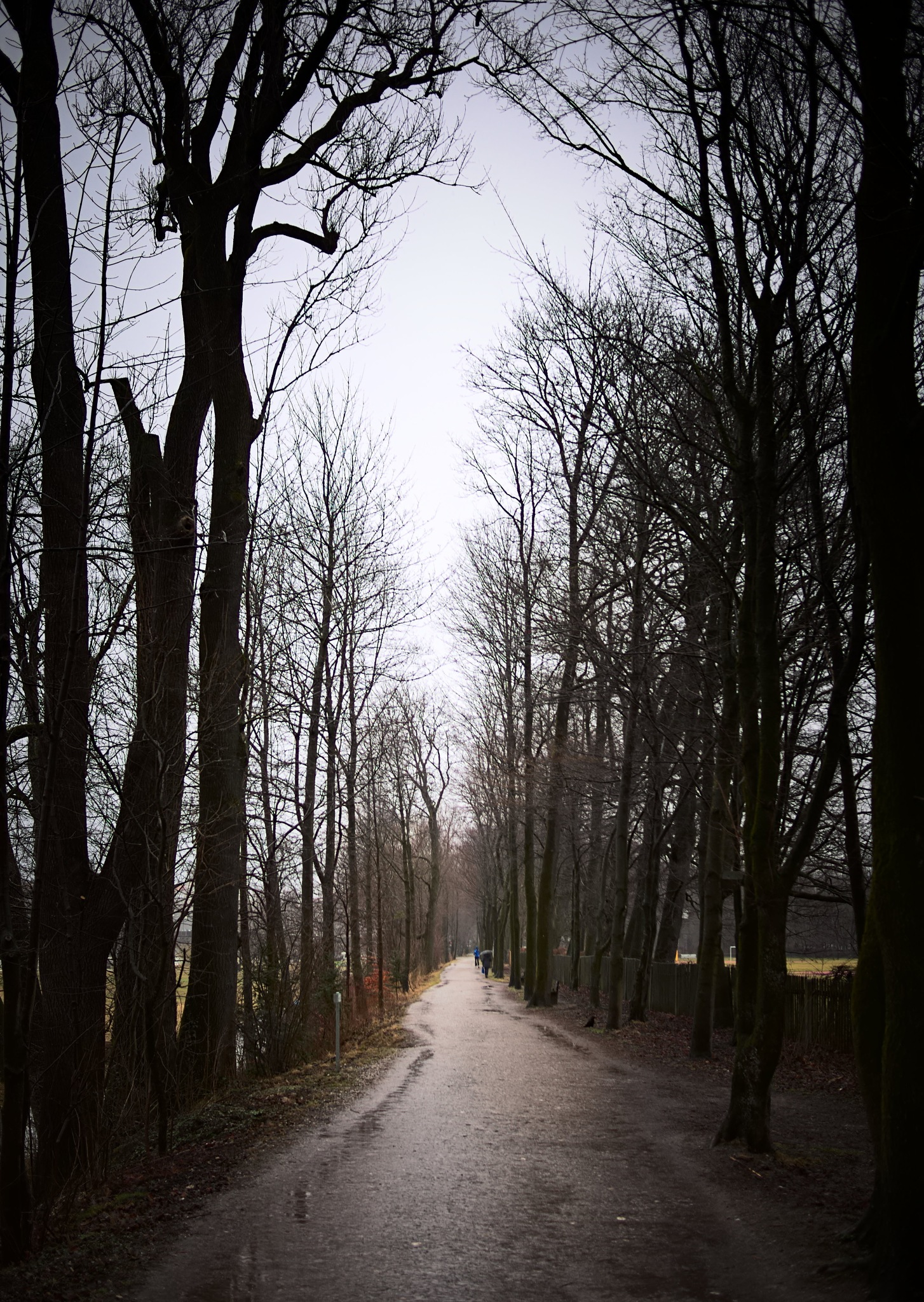 along this dirt path by koaxial