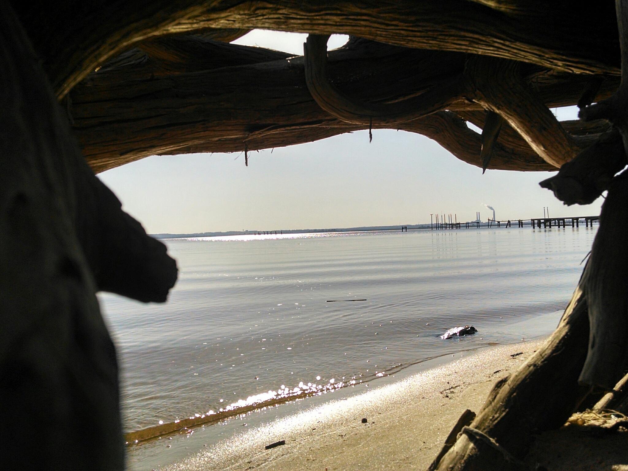 River Scene by Angela Roark aka Raven Isaboe Wolfe