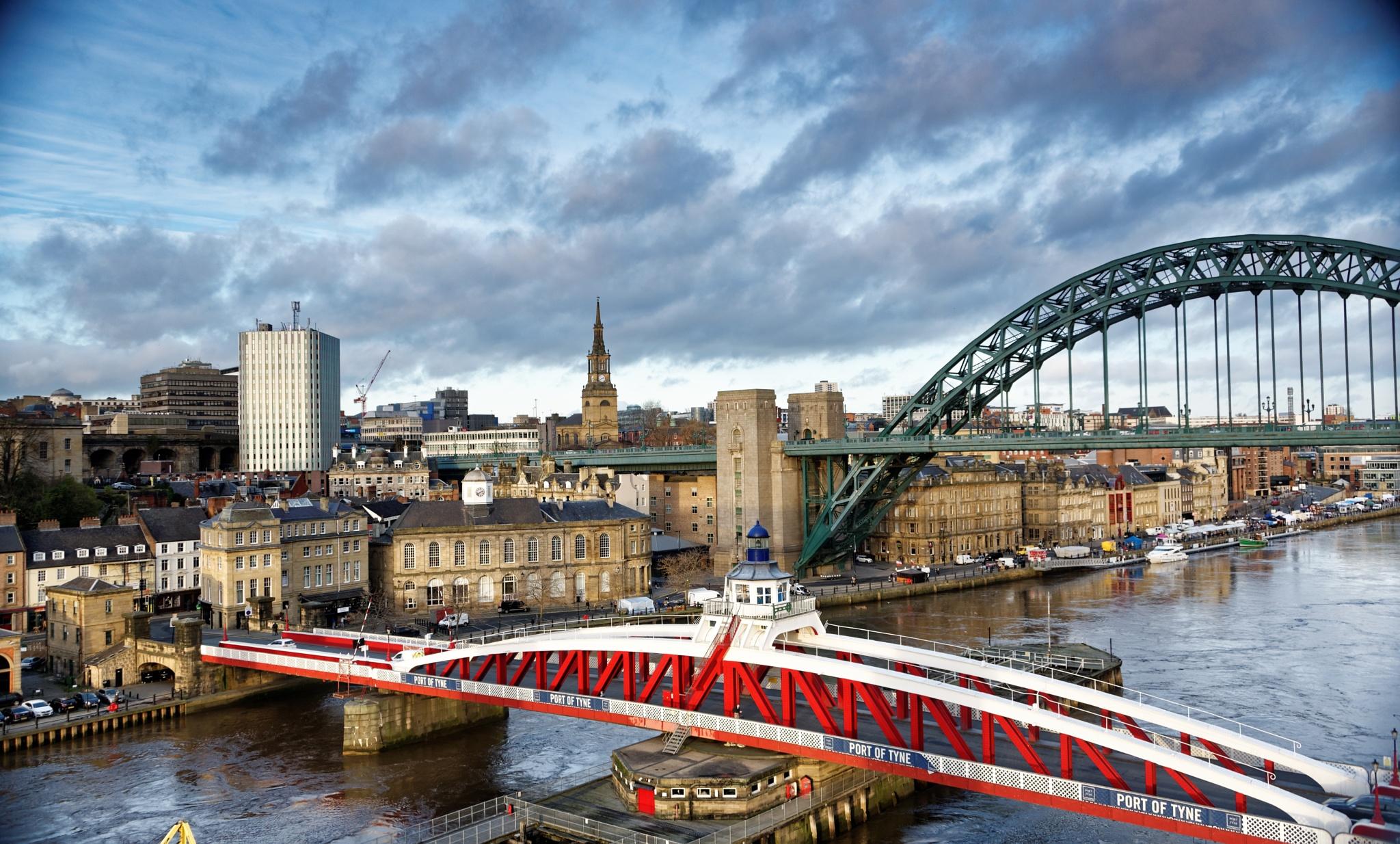 Bridges on the Tyne by Paul Collins