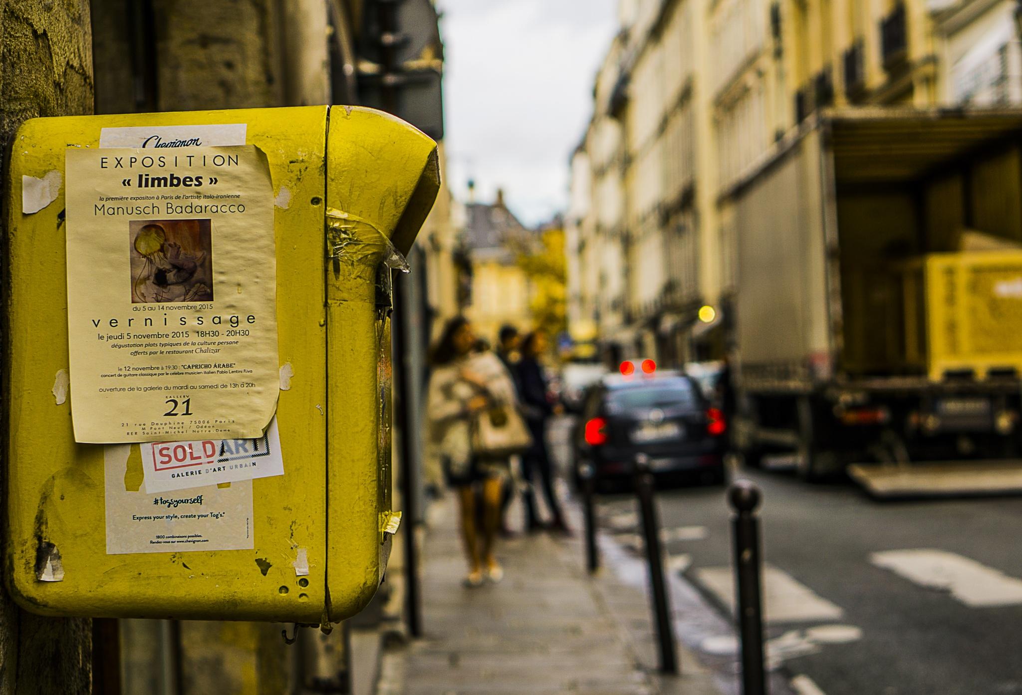 Parking Meter, Paris by Chris Lane