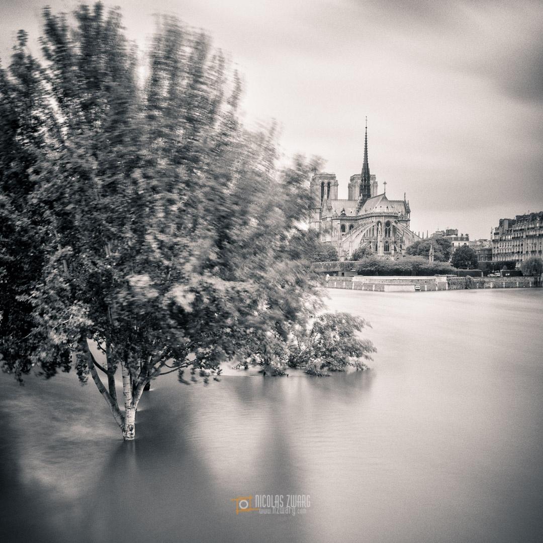 Photo in Black and White #paris #flood #flooding #crue #crue2016 #blackandwhite #longexposure #longexpo #cityscape