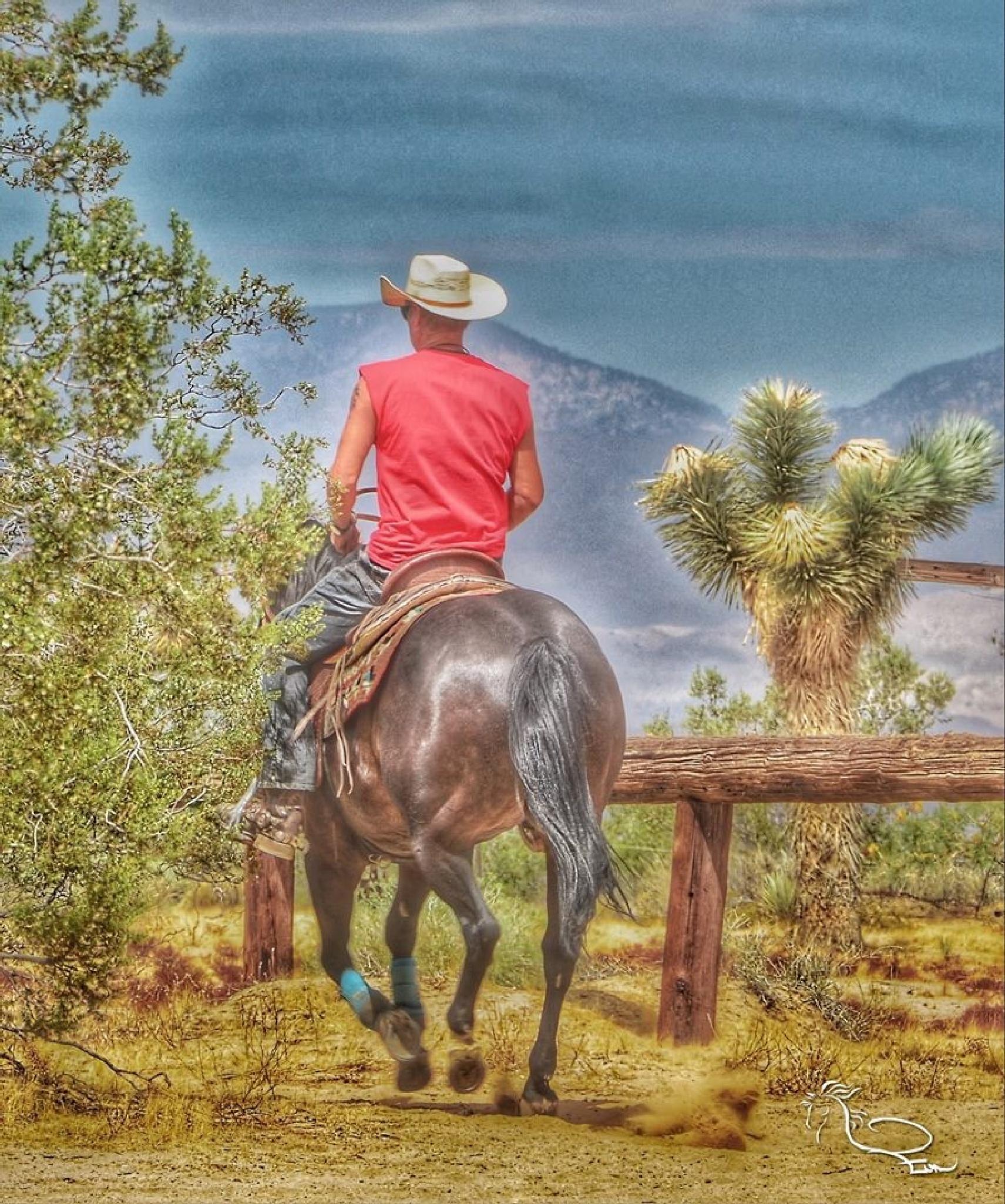 Western Riding in The High Desert California Style by Evon Schaar Kurtz