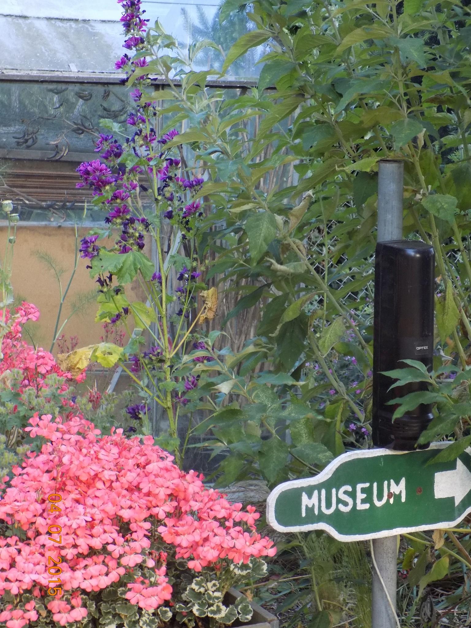 SKLR Museum entrance by Jan Bruniges