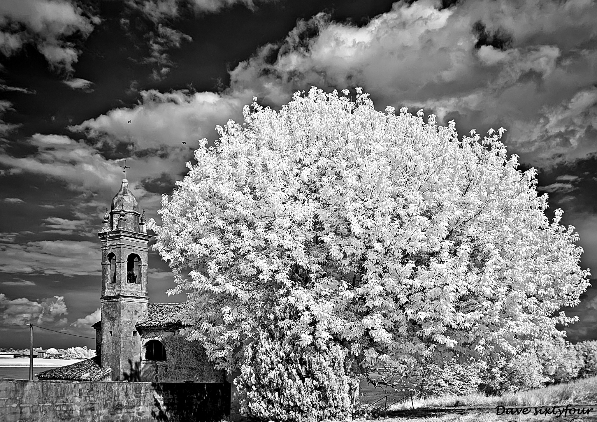 Infrared World _Countryside_ by Davide