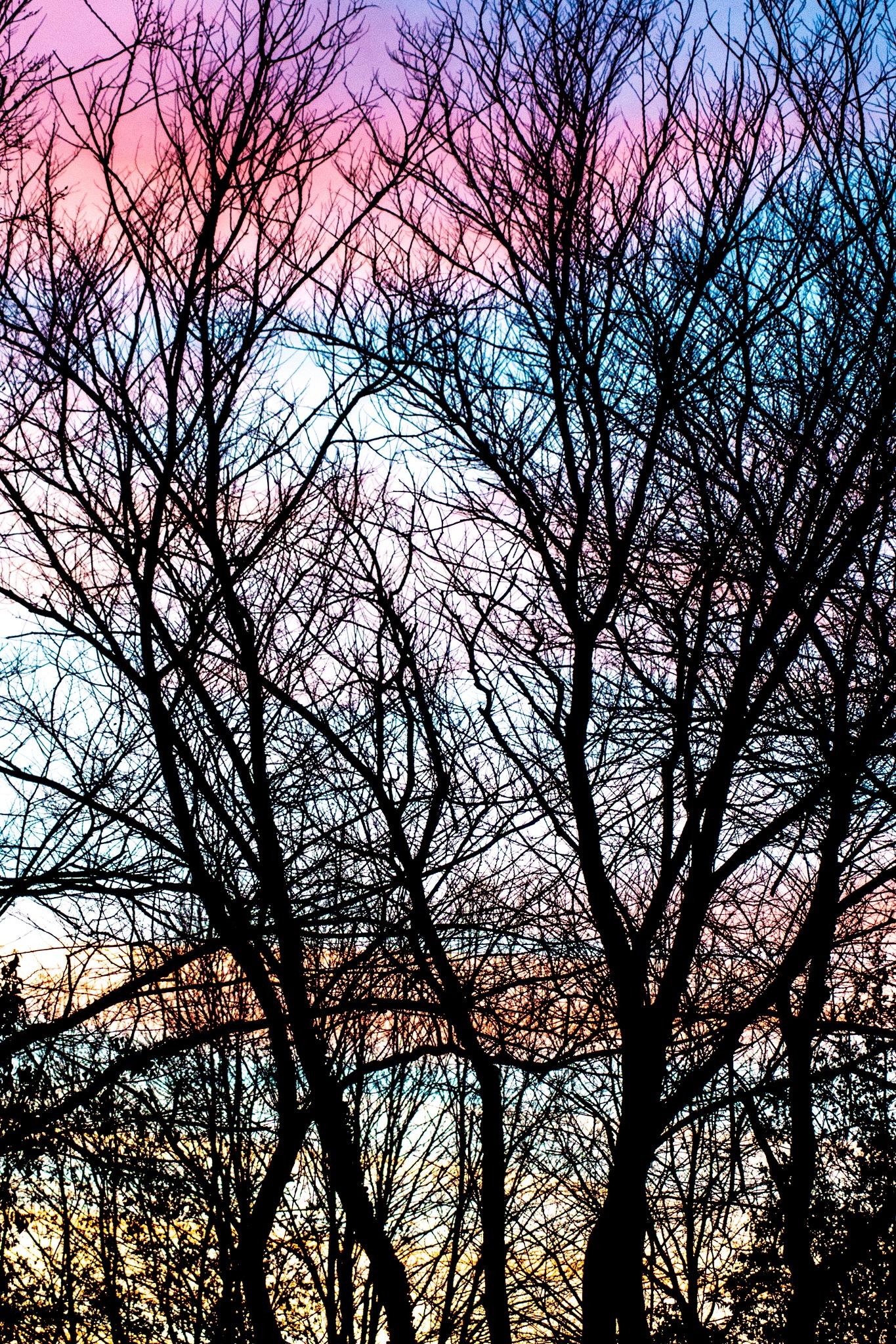 Sunset by Frank Brande