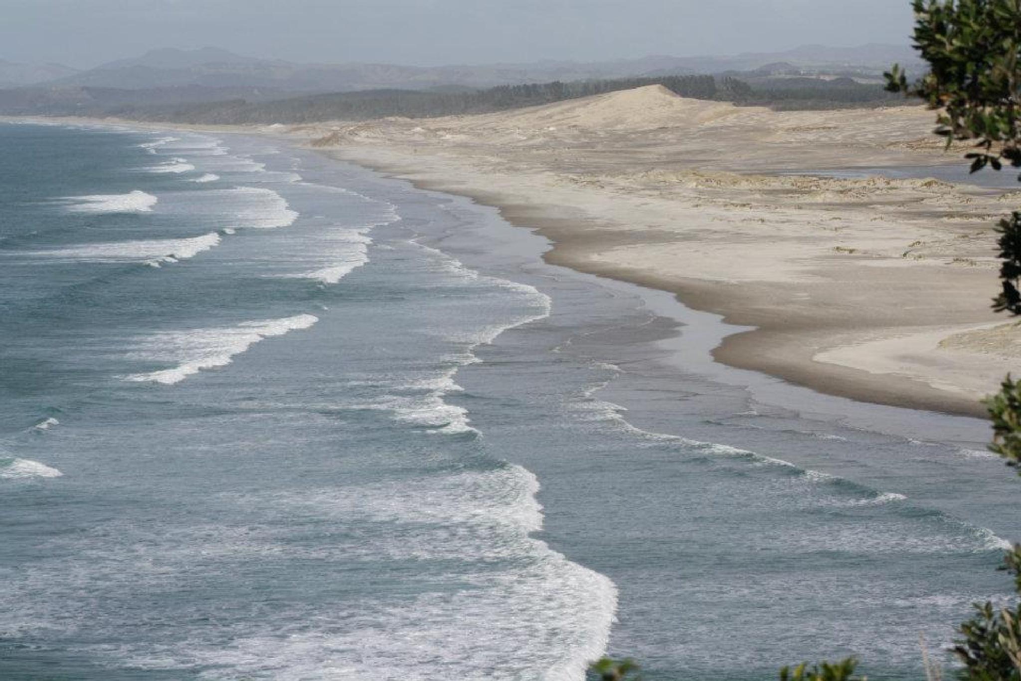 Sand dunes 1 by Michele  Stewart