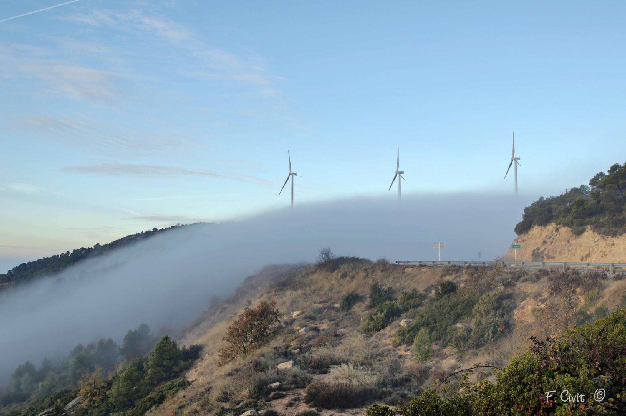 Niebla by FCivit