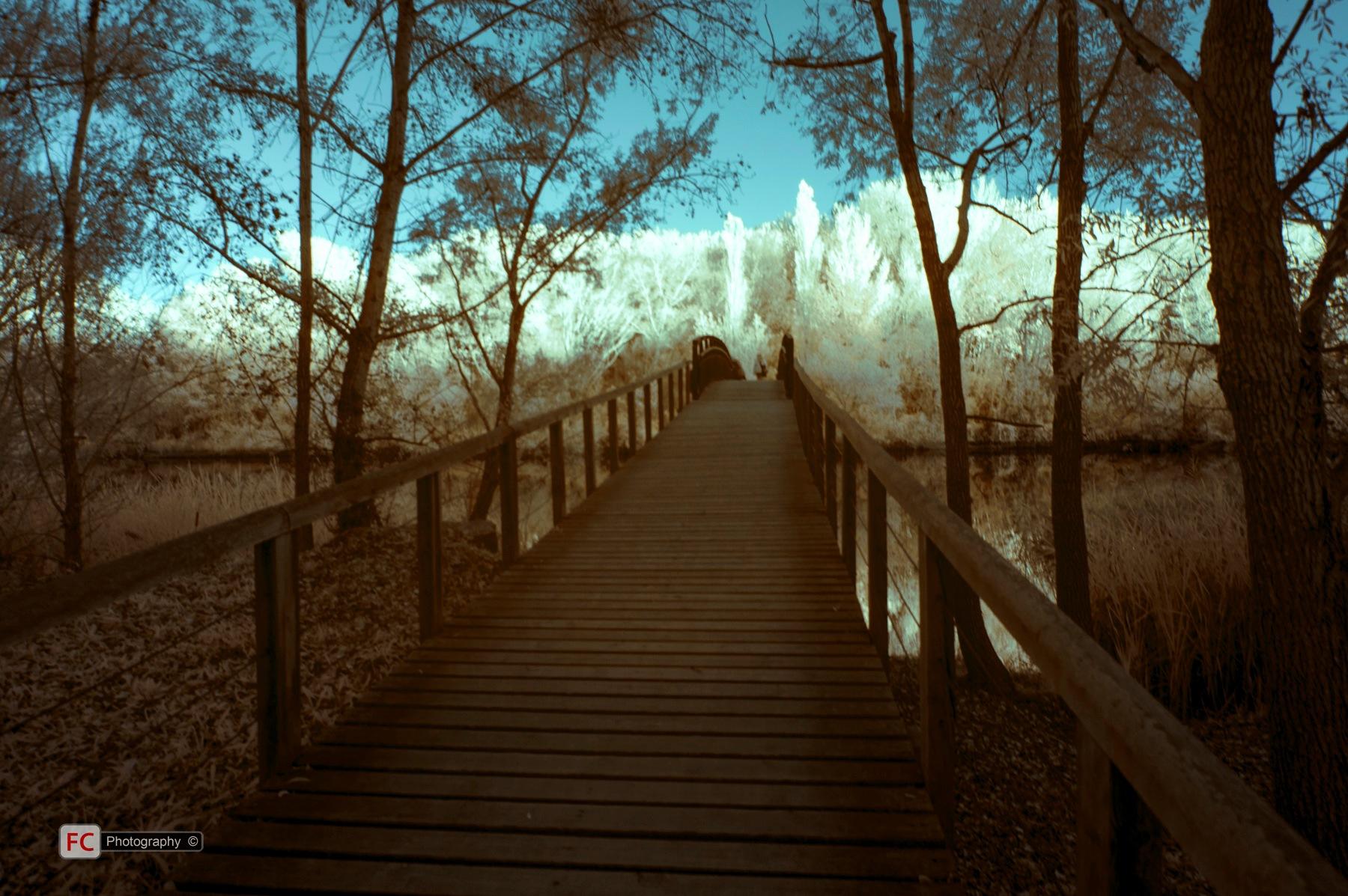 Parc de la Mitjana - IR 02 by FCivit