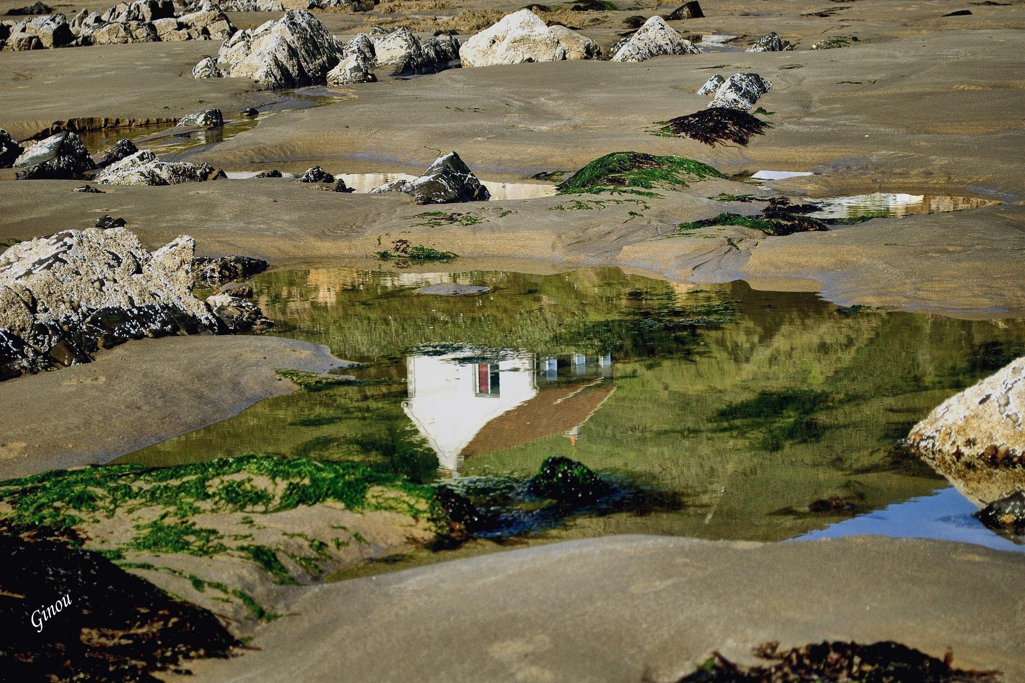 La maison sous la mer by Creusson Ginette