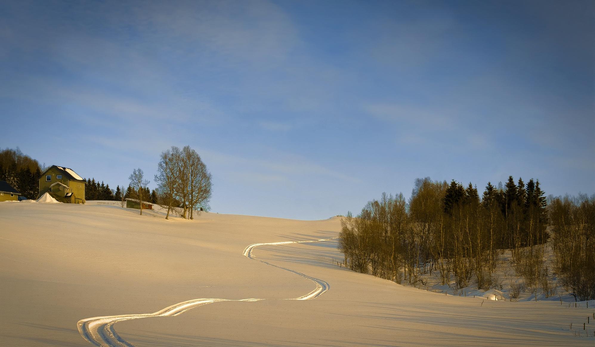 Photo in Landscape #ballangen #nordland #northern norway #winter #snow #trails