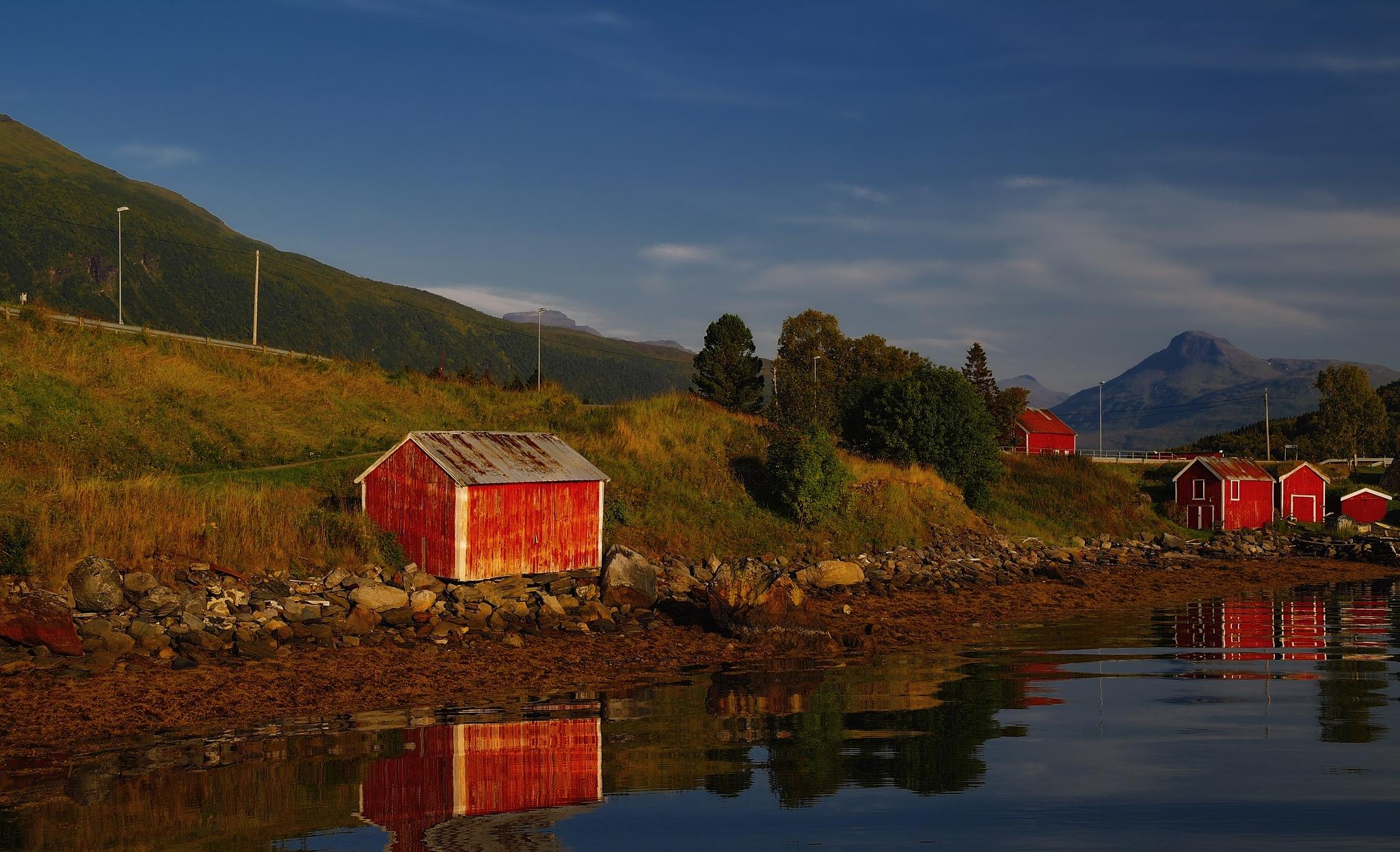 Evening shade by John Frost-bite Slettjord