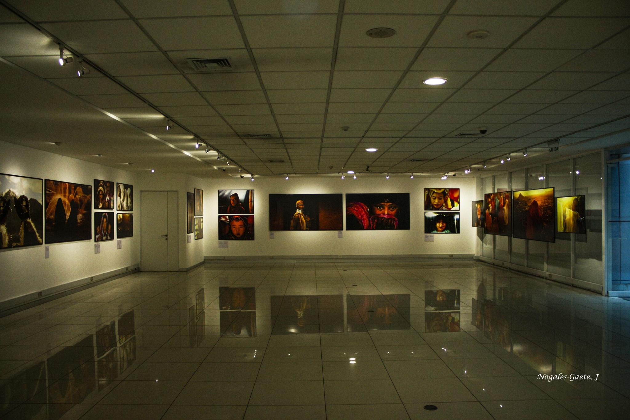 Art Gallery - Galeria de arte by Jorge Nogales