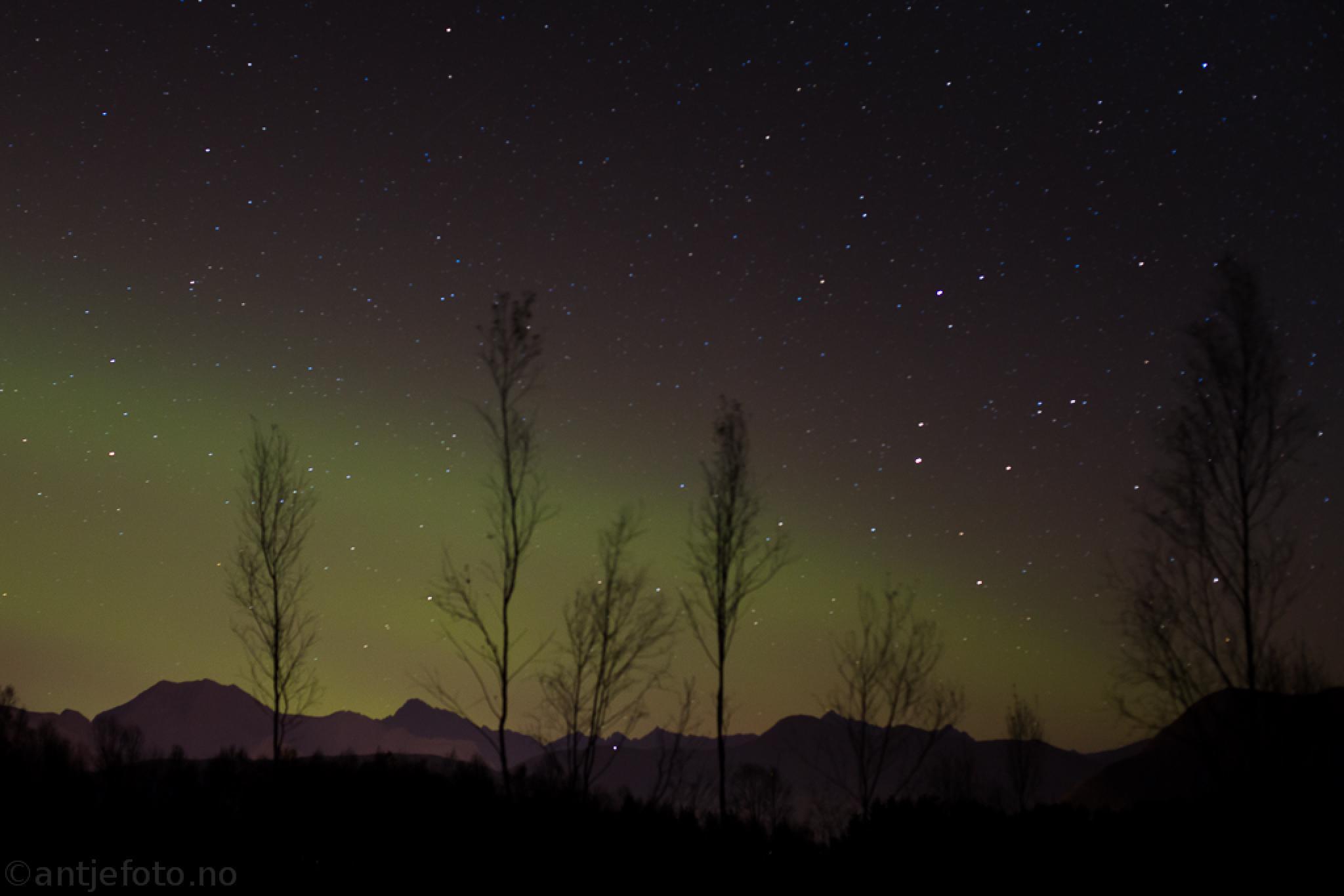 Northern light  by antjemeier3
