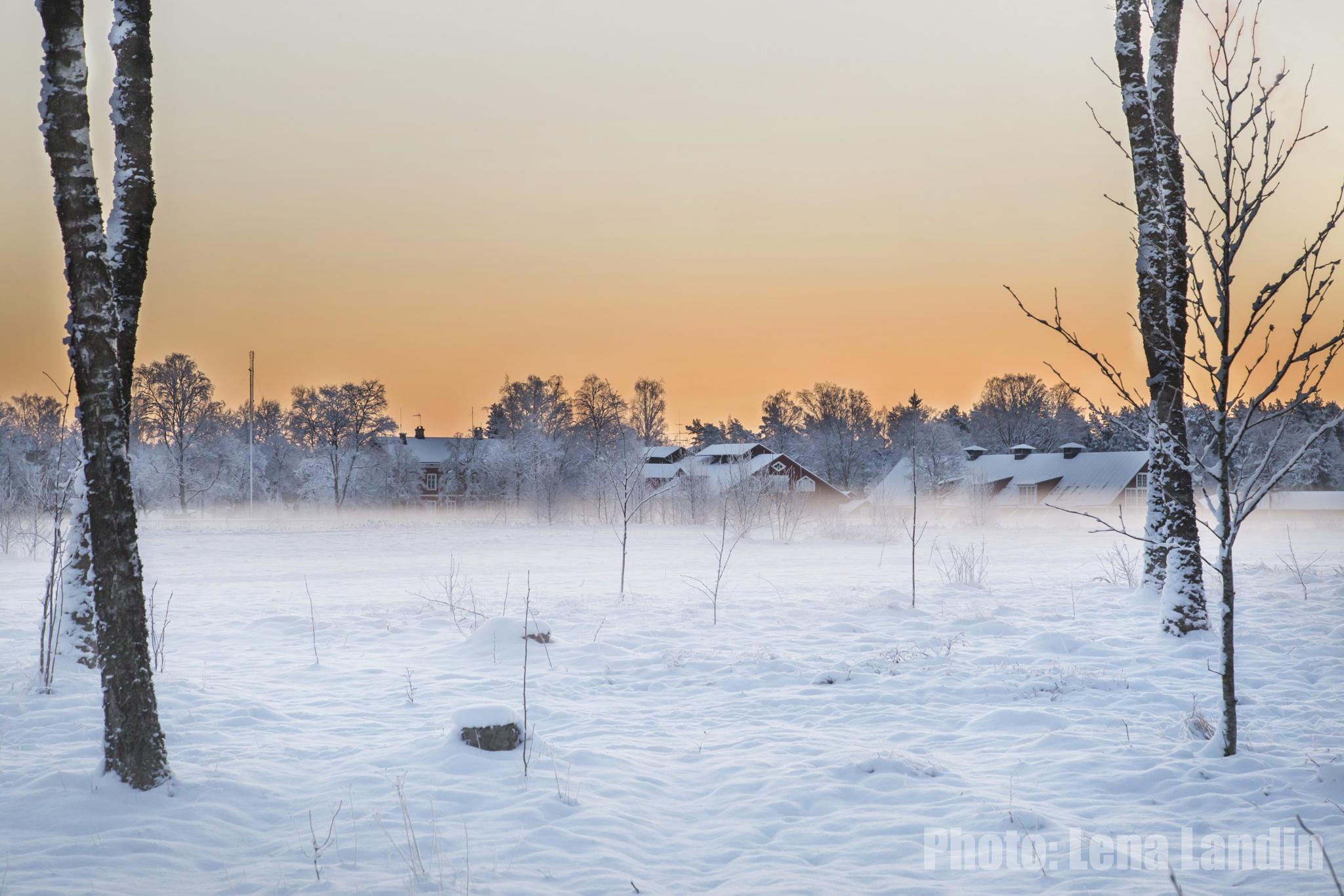 Cold sunrise by LenaLadde