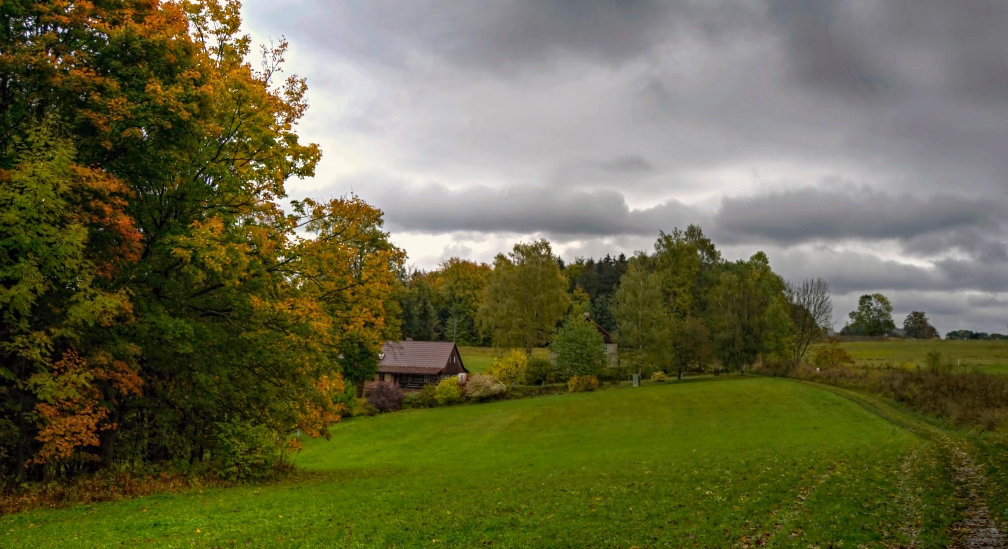 Deštivý podzim by Hana