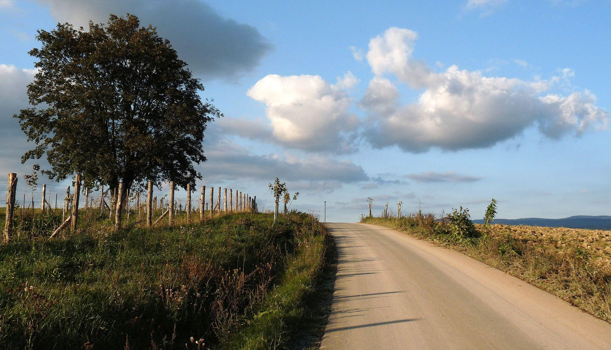 Cesta do nebe by Hana