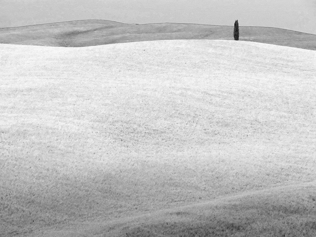 White and Grey landscapes  by Matteo Venturini