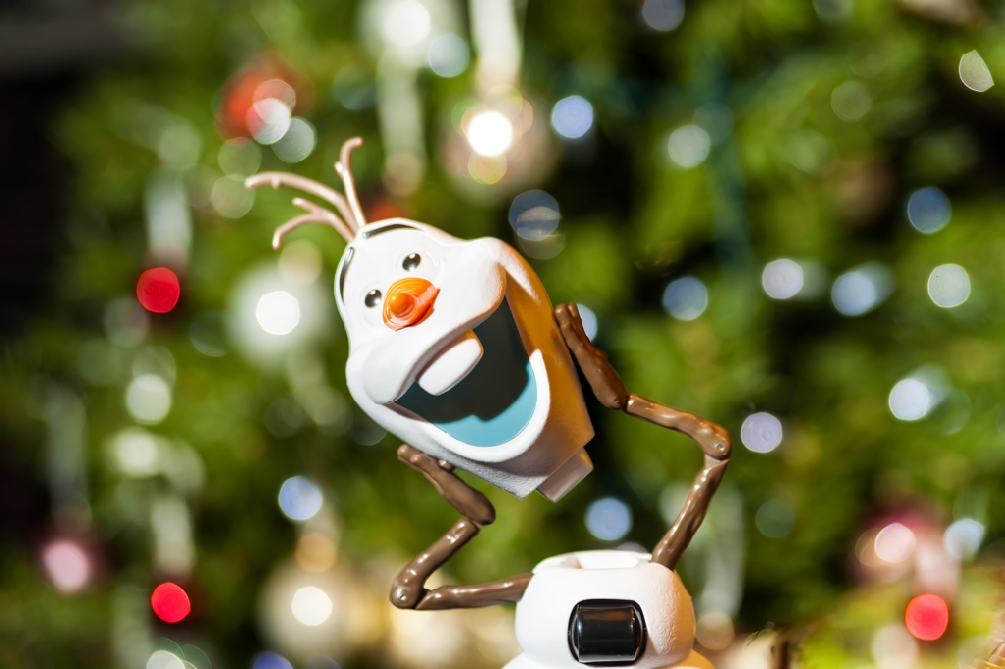 Olaf Again  by Hoffler Pictorials