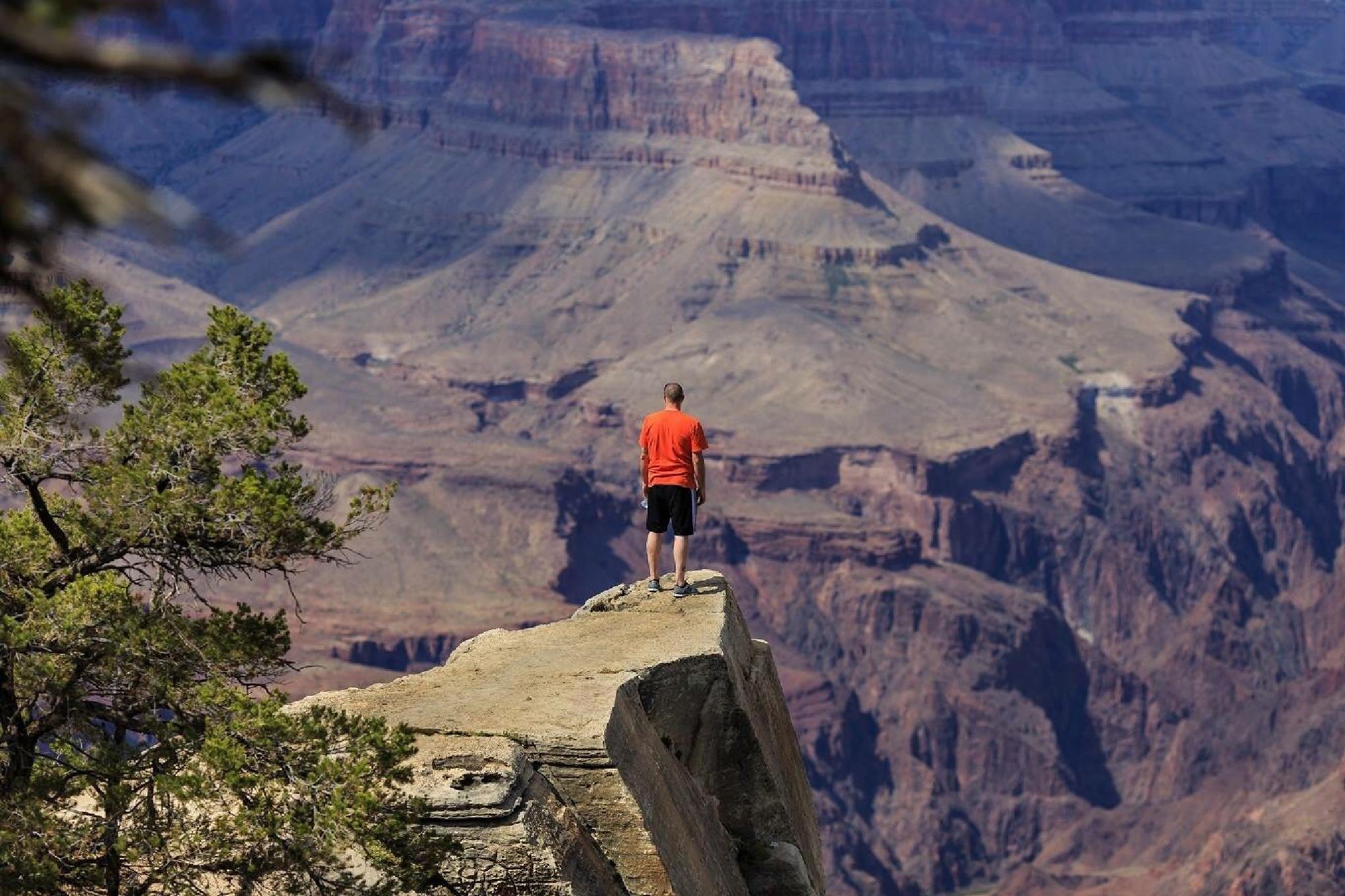 Grand Canyon guy by Tony Nicola