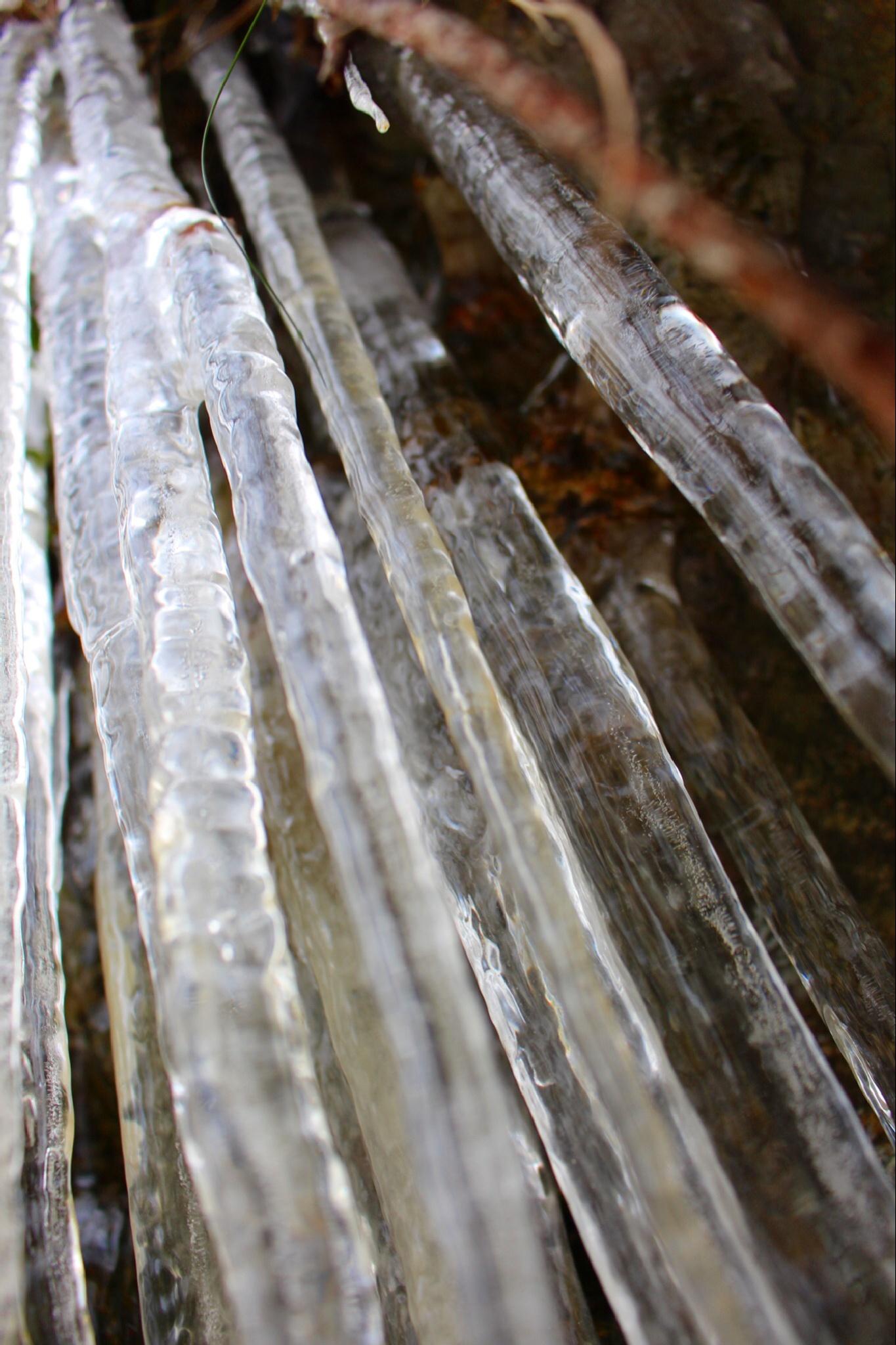 Ice by Flemming Jensen