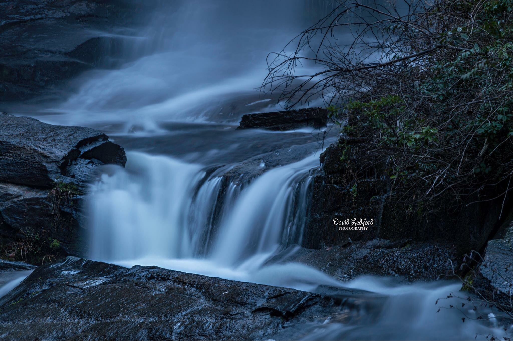 Untitled by David Ledford Photography