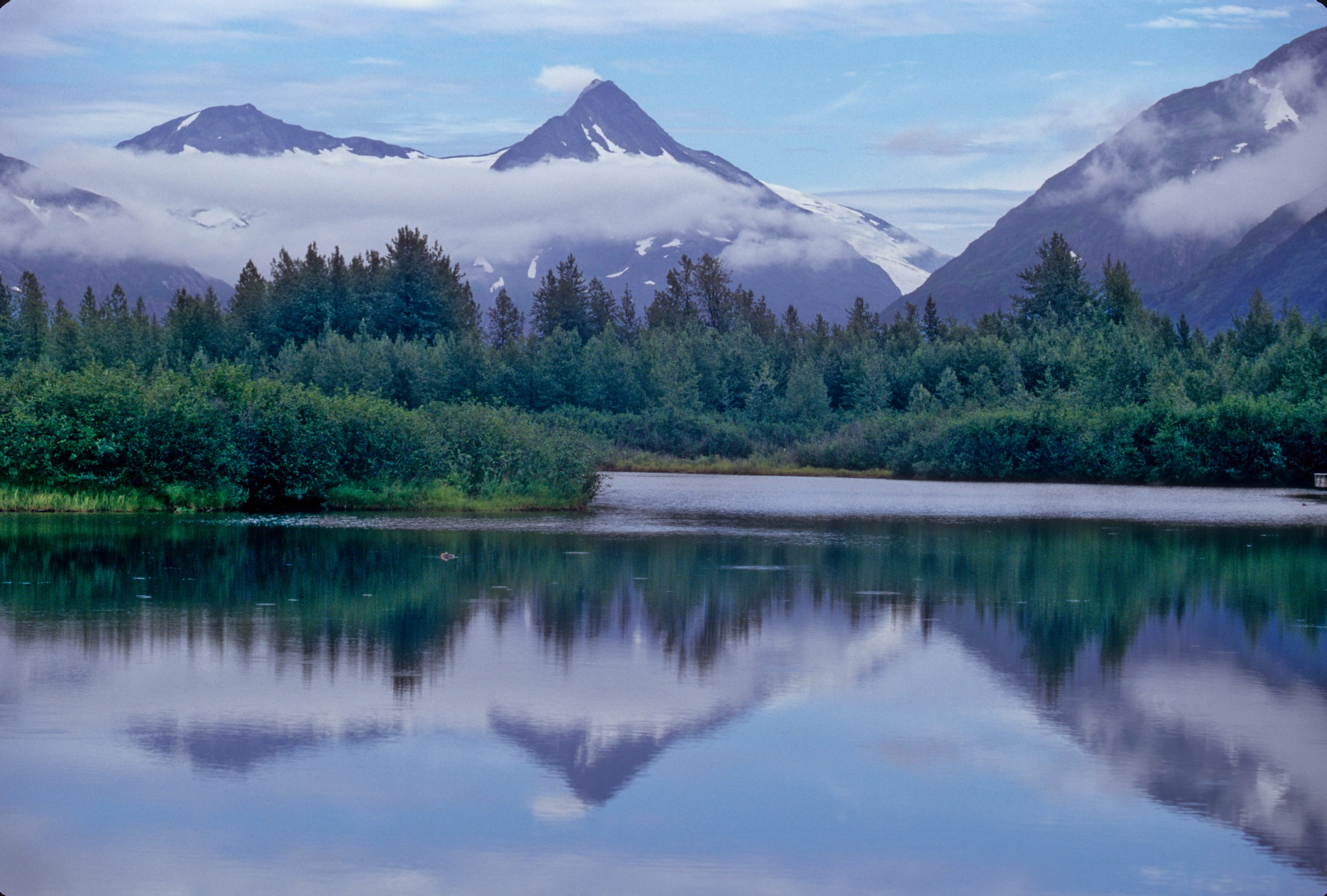 Pond in Homer Ak by fish1475