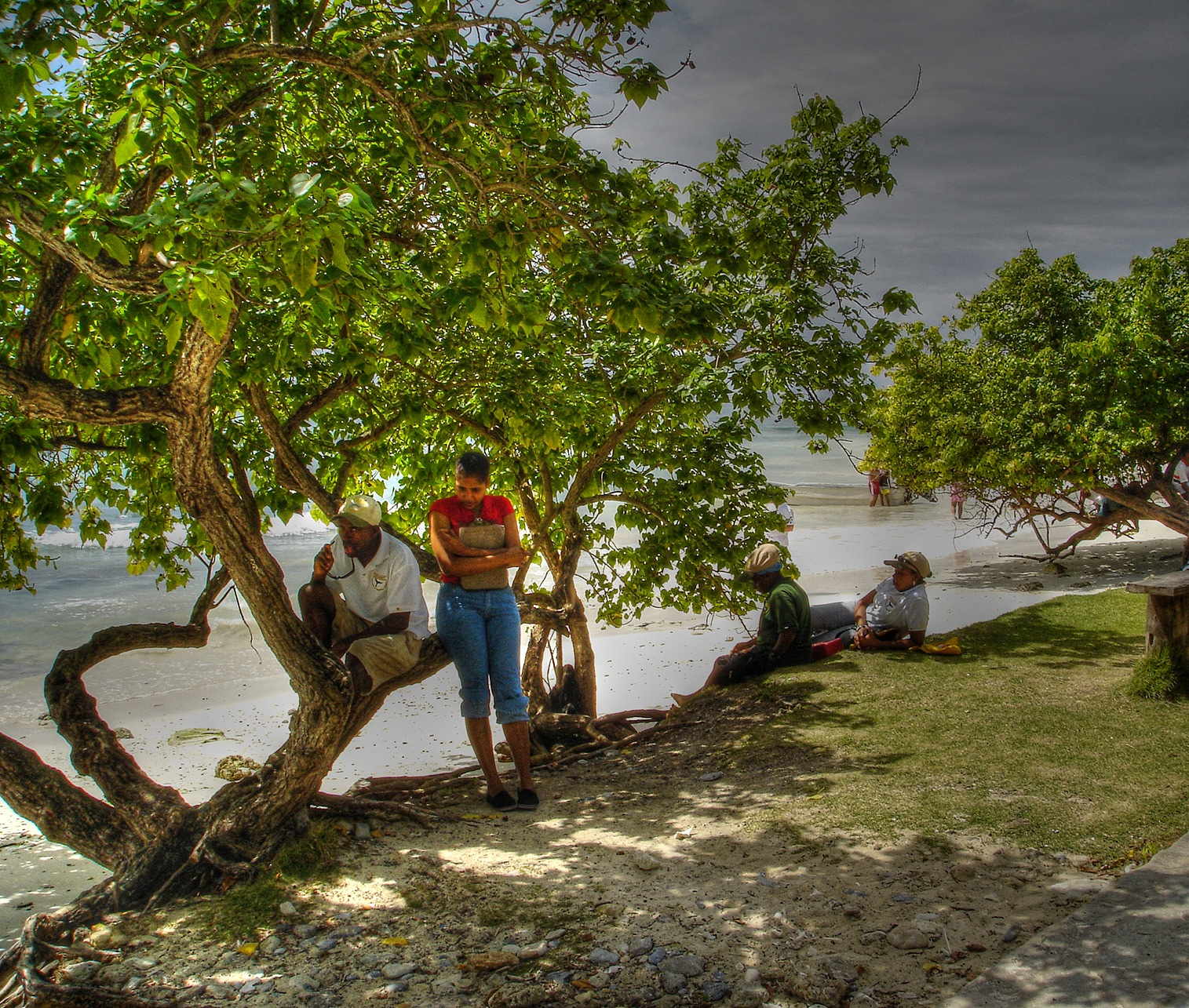Mangrove People by photogizmo
