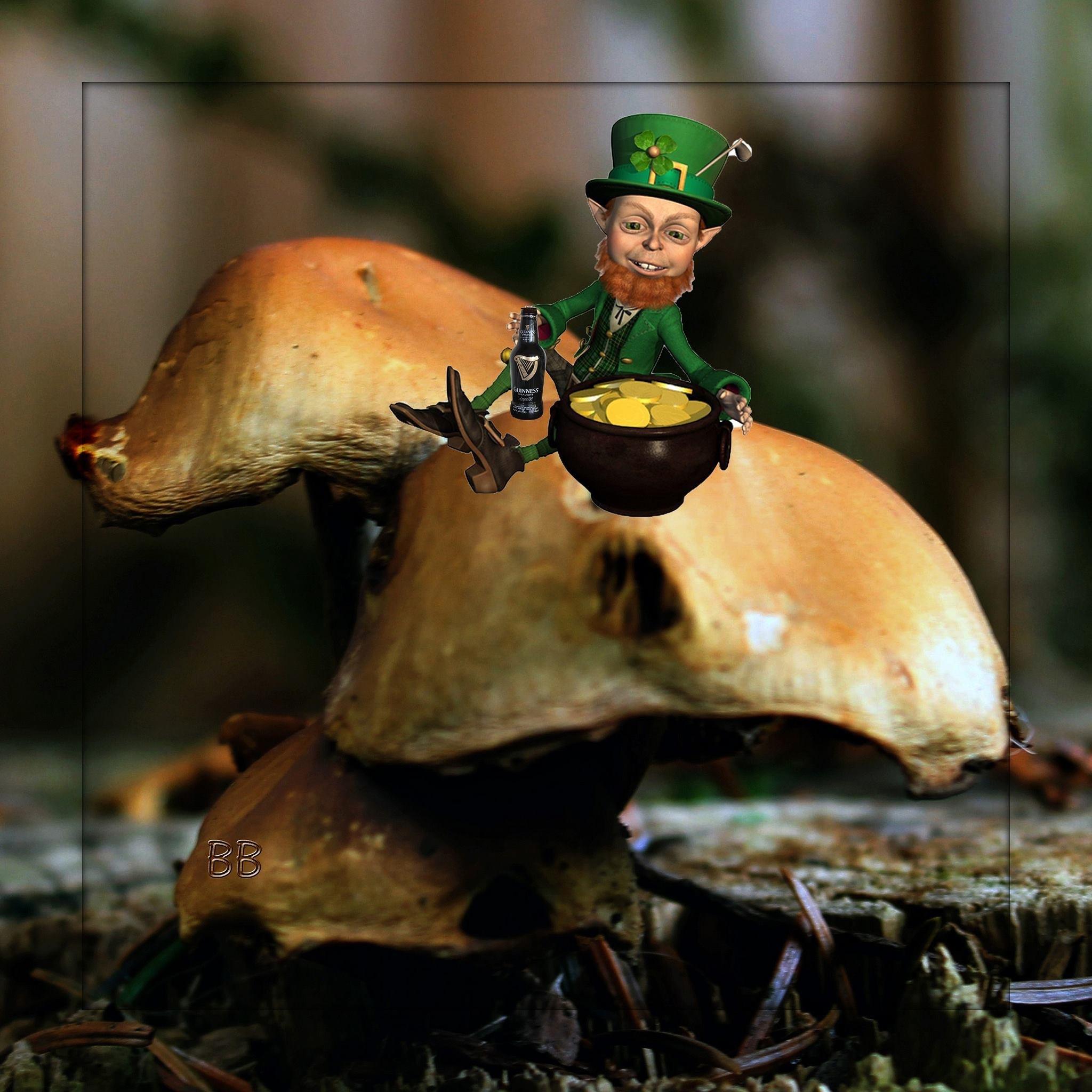 Happy Saint Paddy's Day by Brenda Boisvert