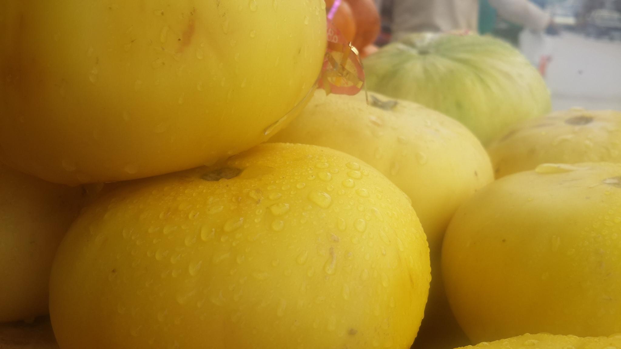 Melon by jamil hussain