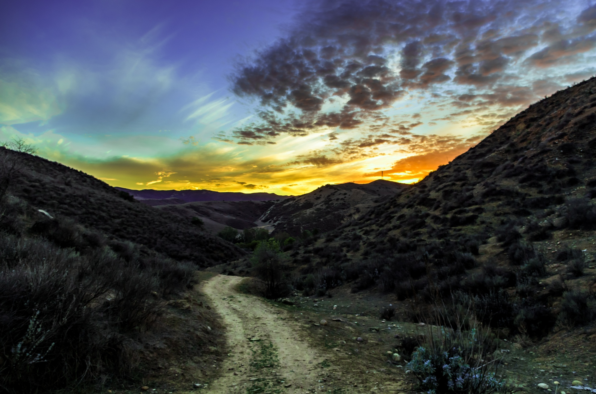 Trail to the Sun by ReaperScoob Photography
