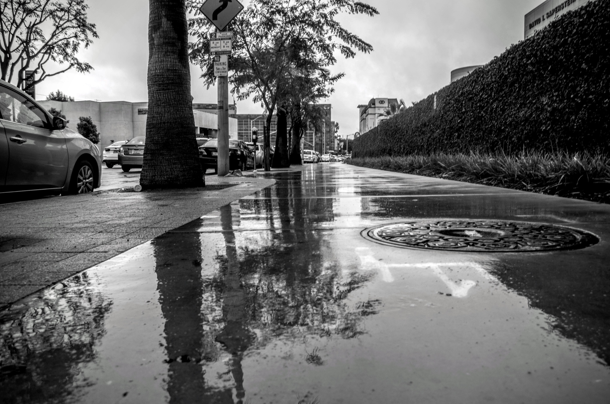 Rainy Streets by ReaperScoob Photography