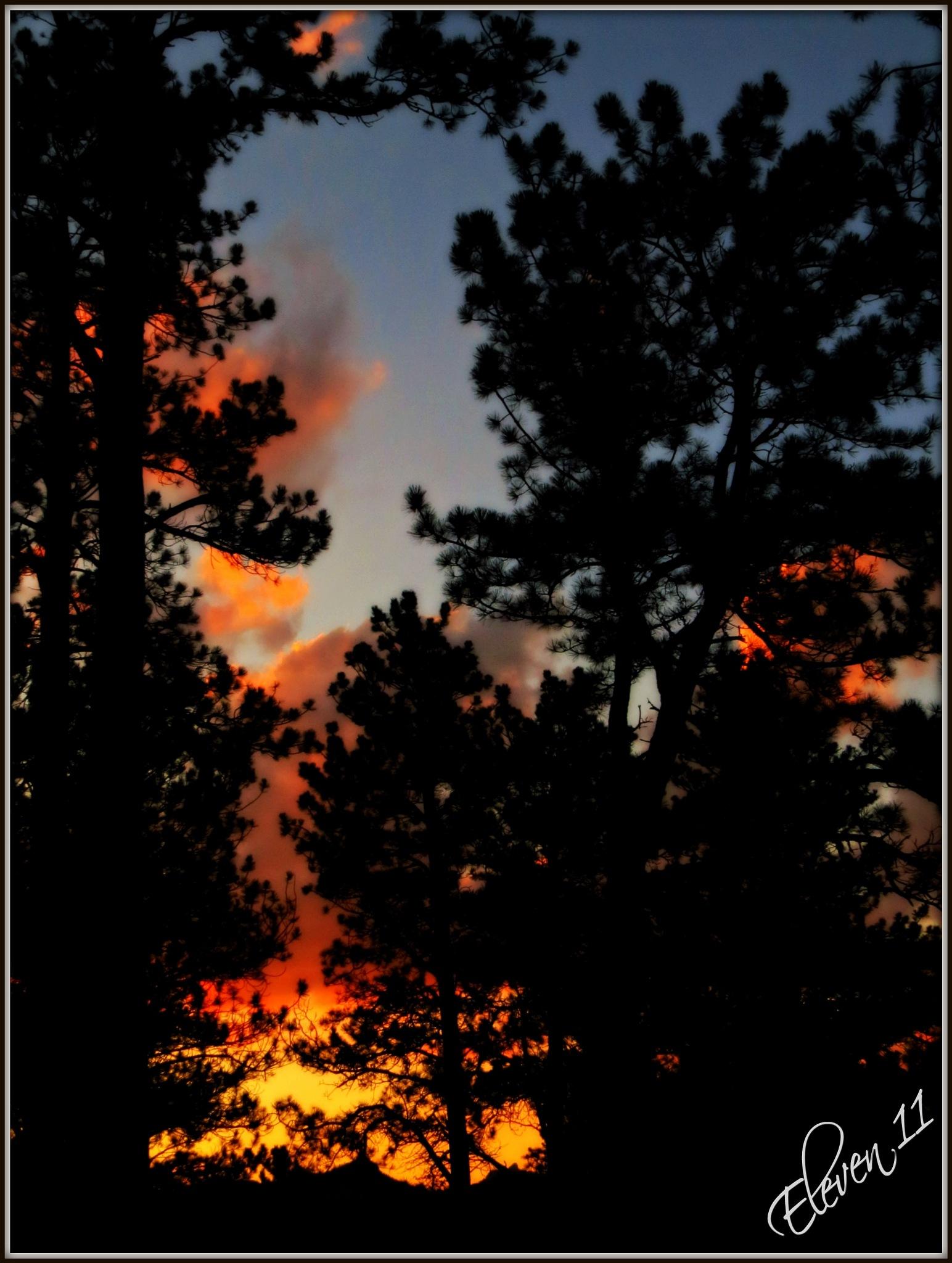 South Dakota Sunset by eleven 11