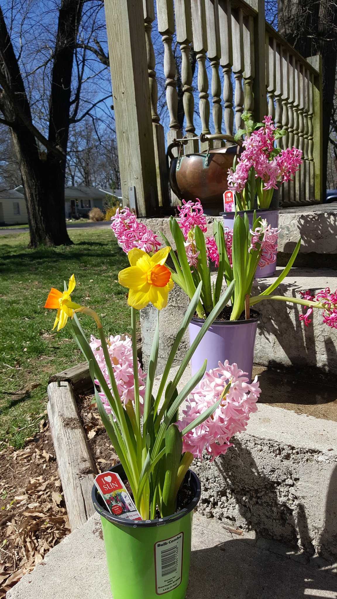 God bless happy spring by Sheila Hyden
