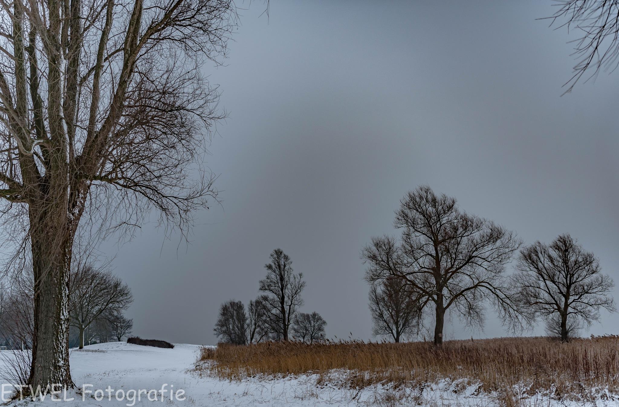 Winter cold by        ETWEL © Fotografie