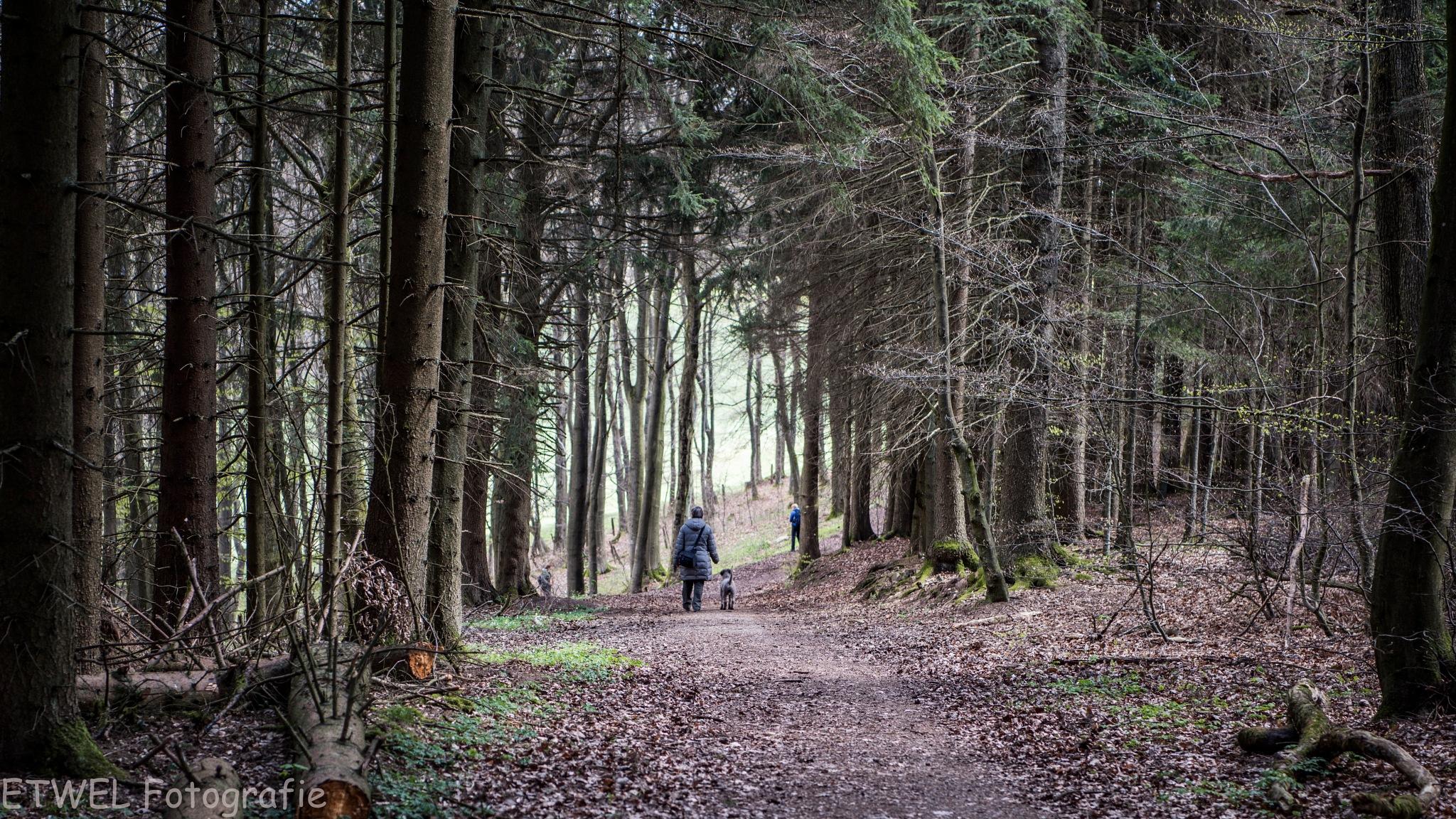 Nice walk by        ETWEL © Fotografie