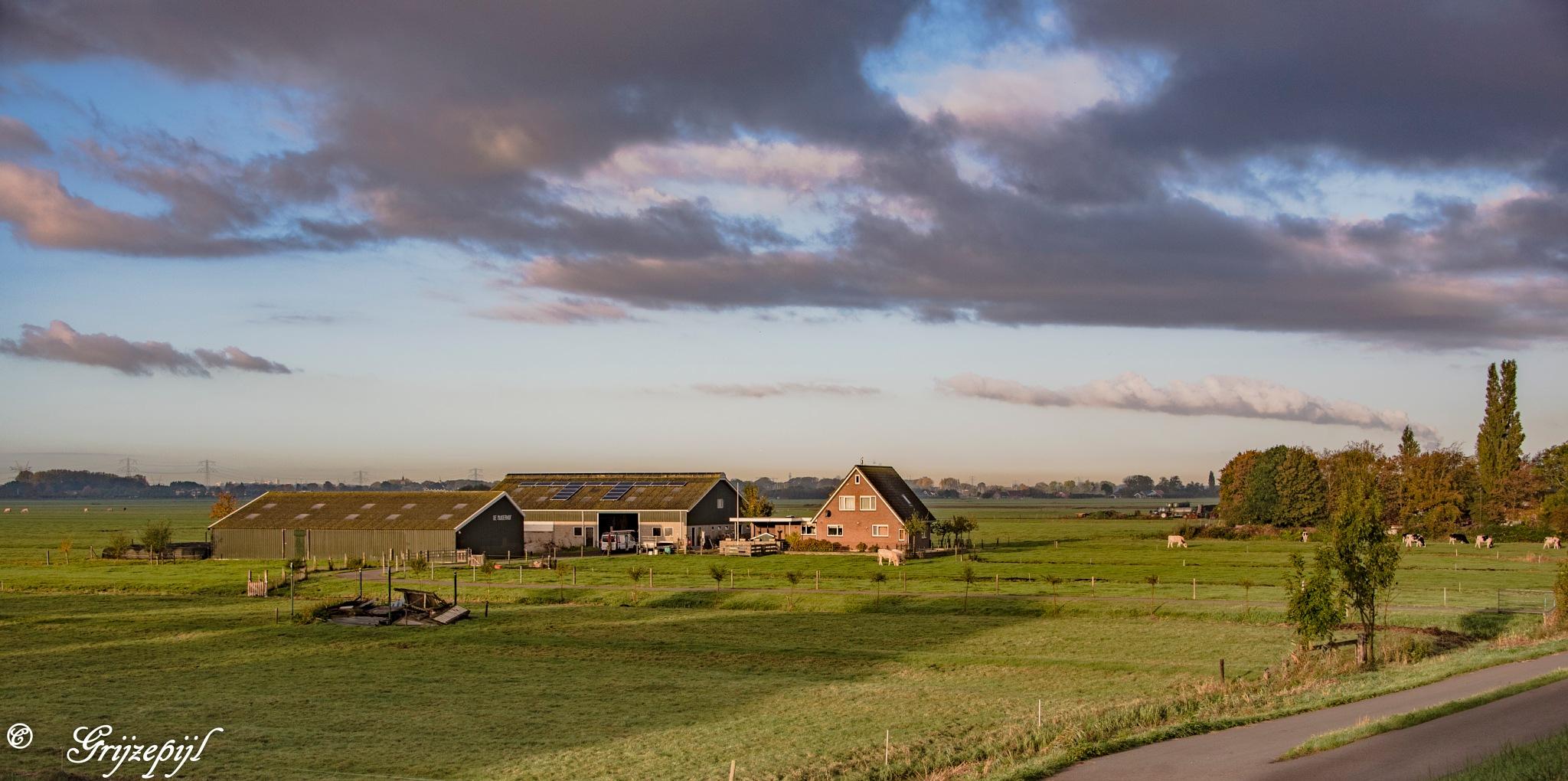 Dutch farm by        ETWEL © Fotografie