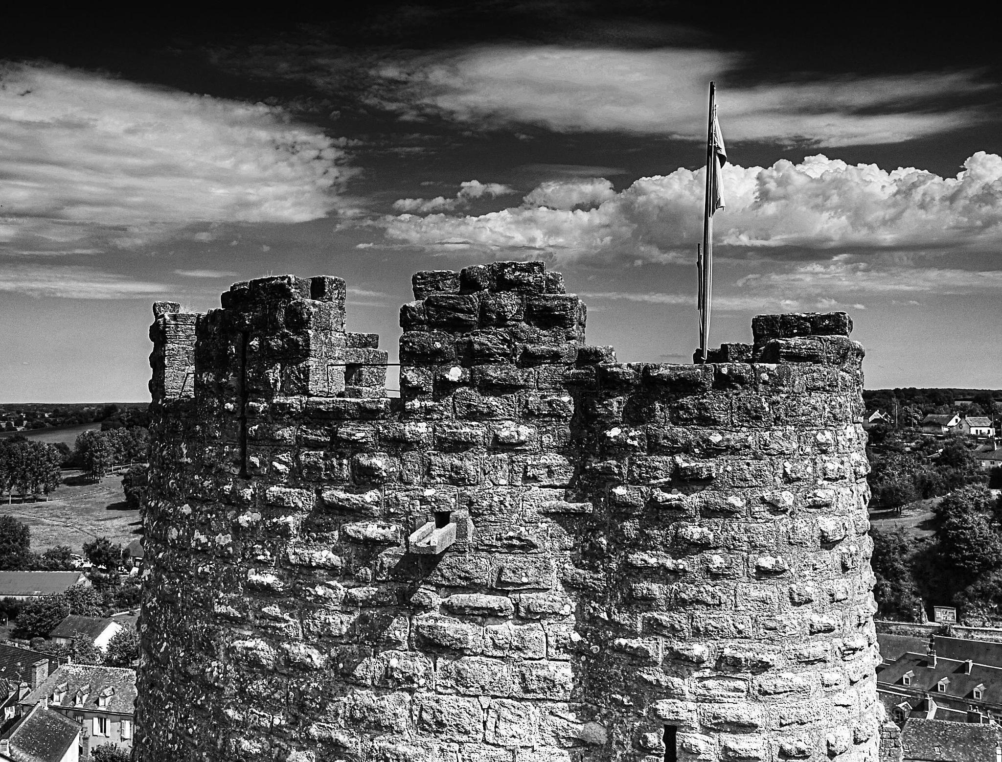 La forteresse médiévale, Bourbon l' Archambault by Armio