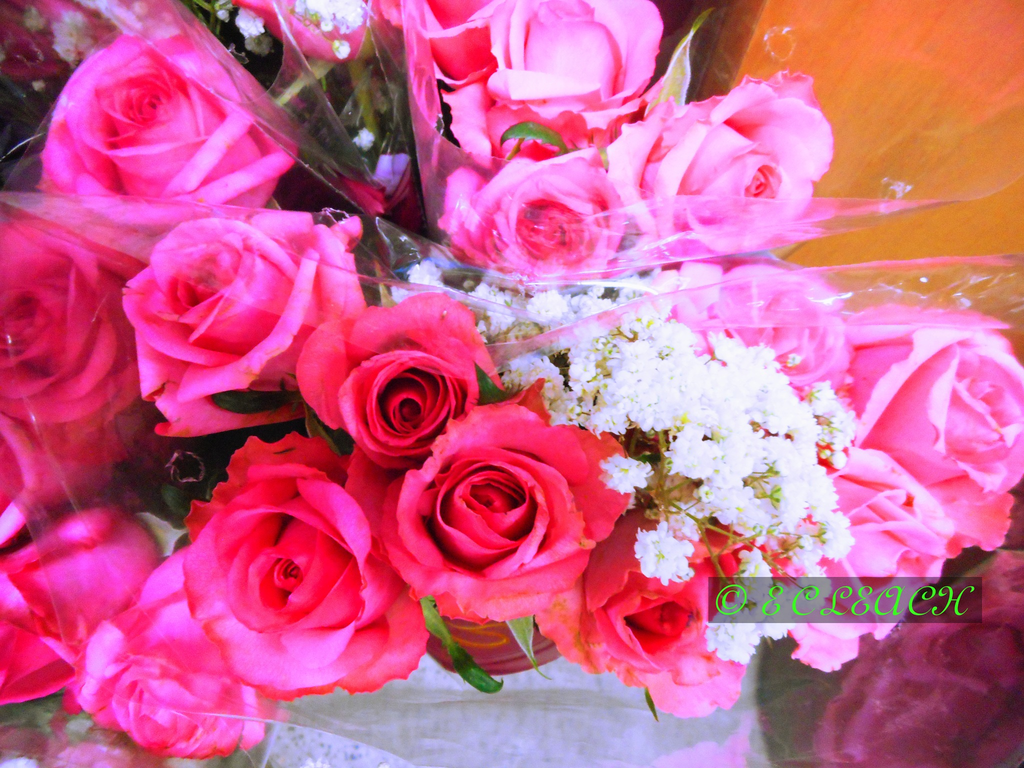 I'm Sending You A Big Bouquet of Roses by Elmer Leach