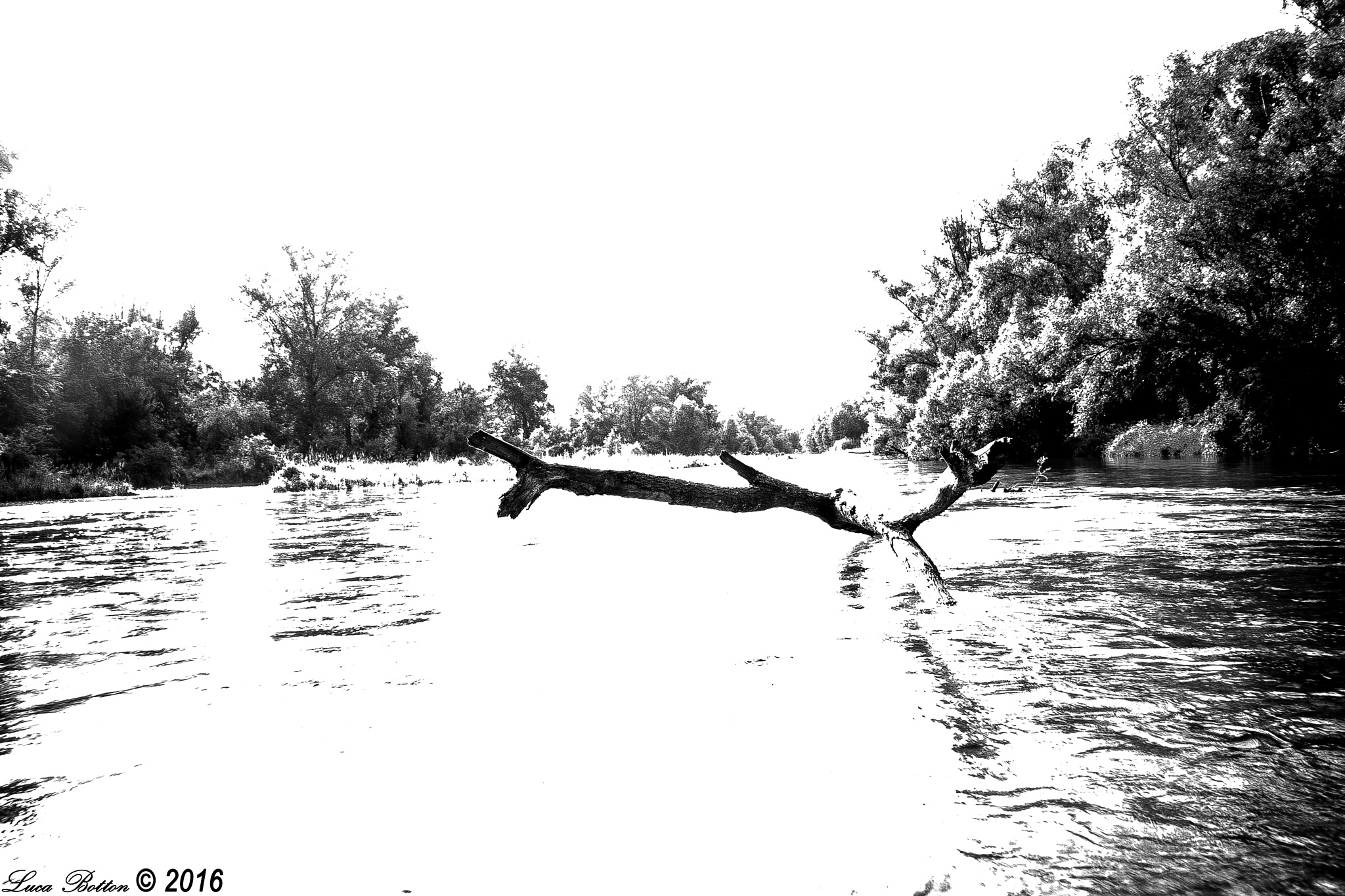 Photo in Black and White #fiume