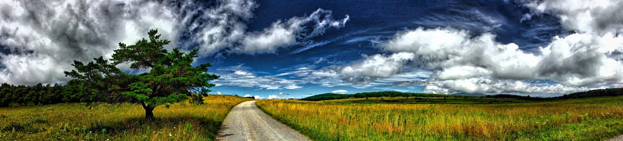 """Mountain Meadow"" by Michael  C. Habina"