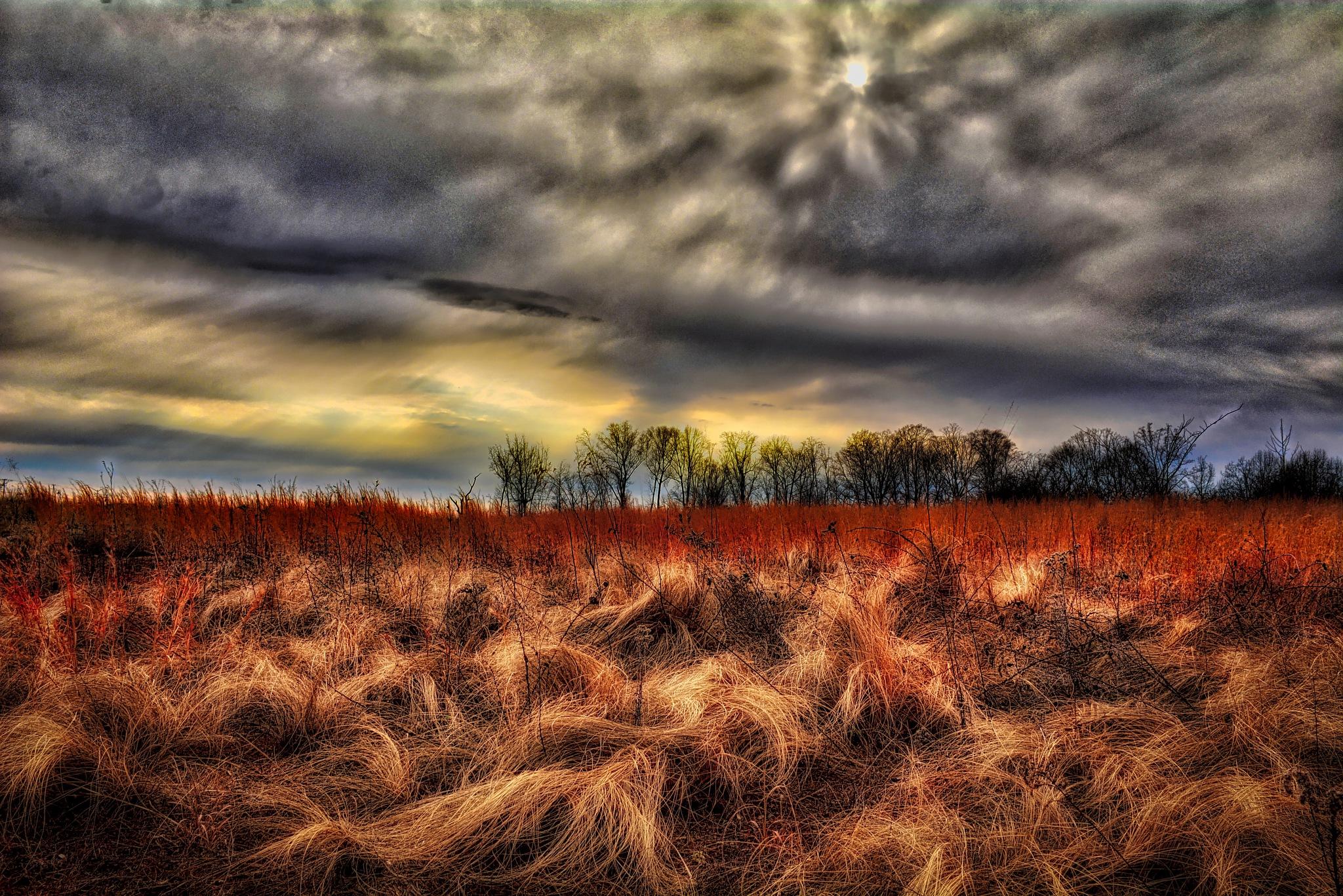 """Warm Winter Day"" by Michael  C. Habina"