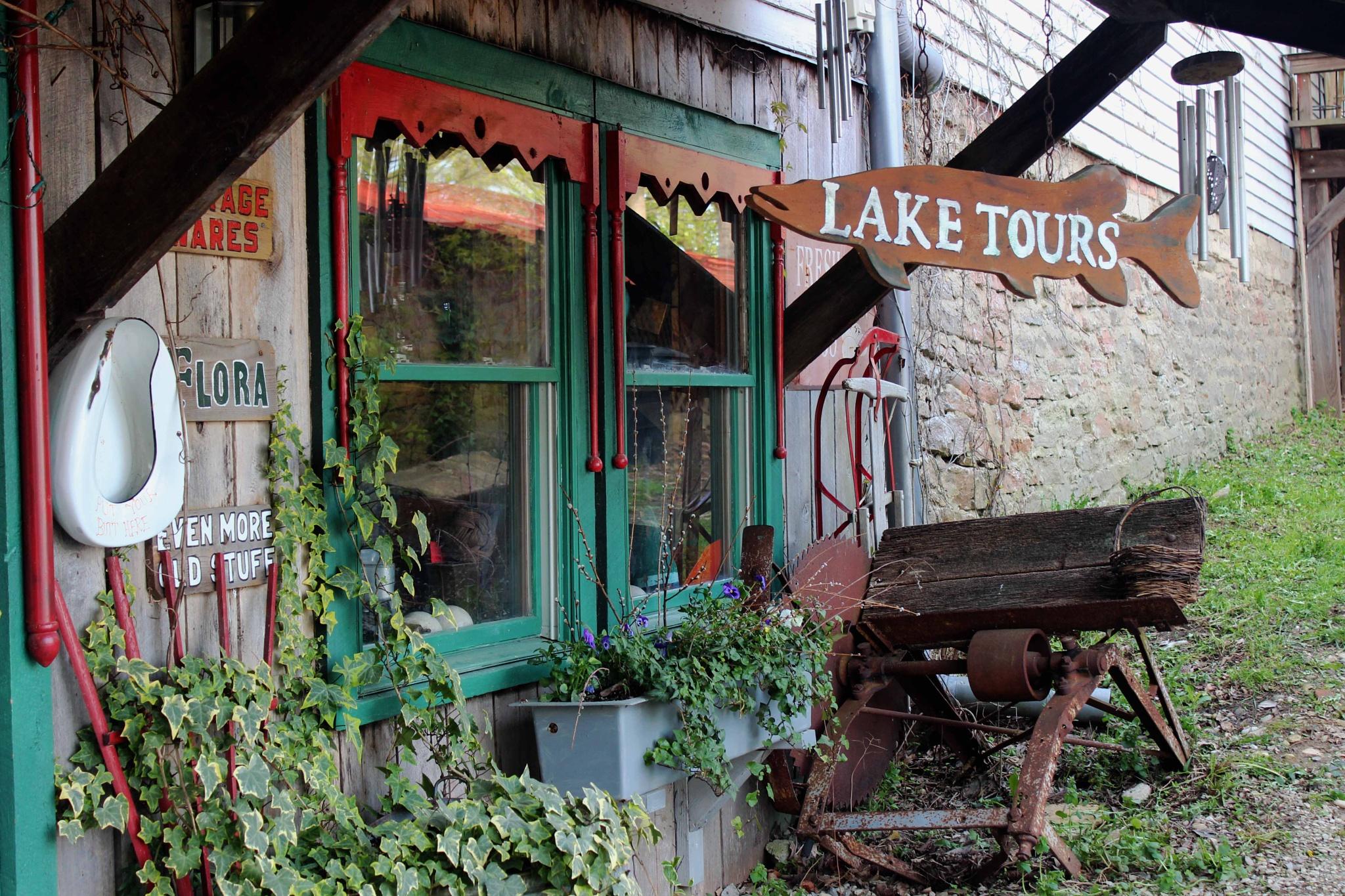 Lake Tours by Karen Harris