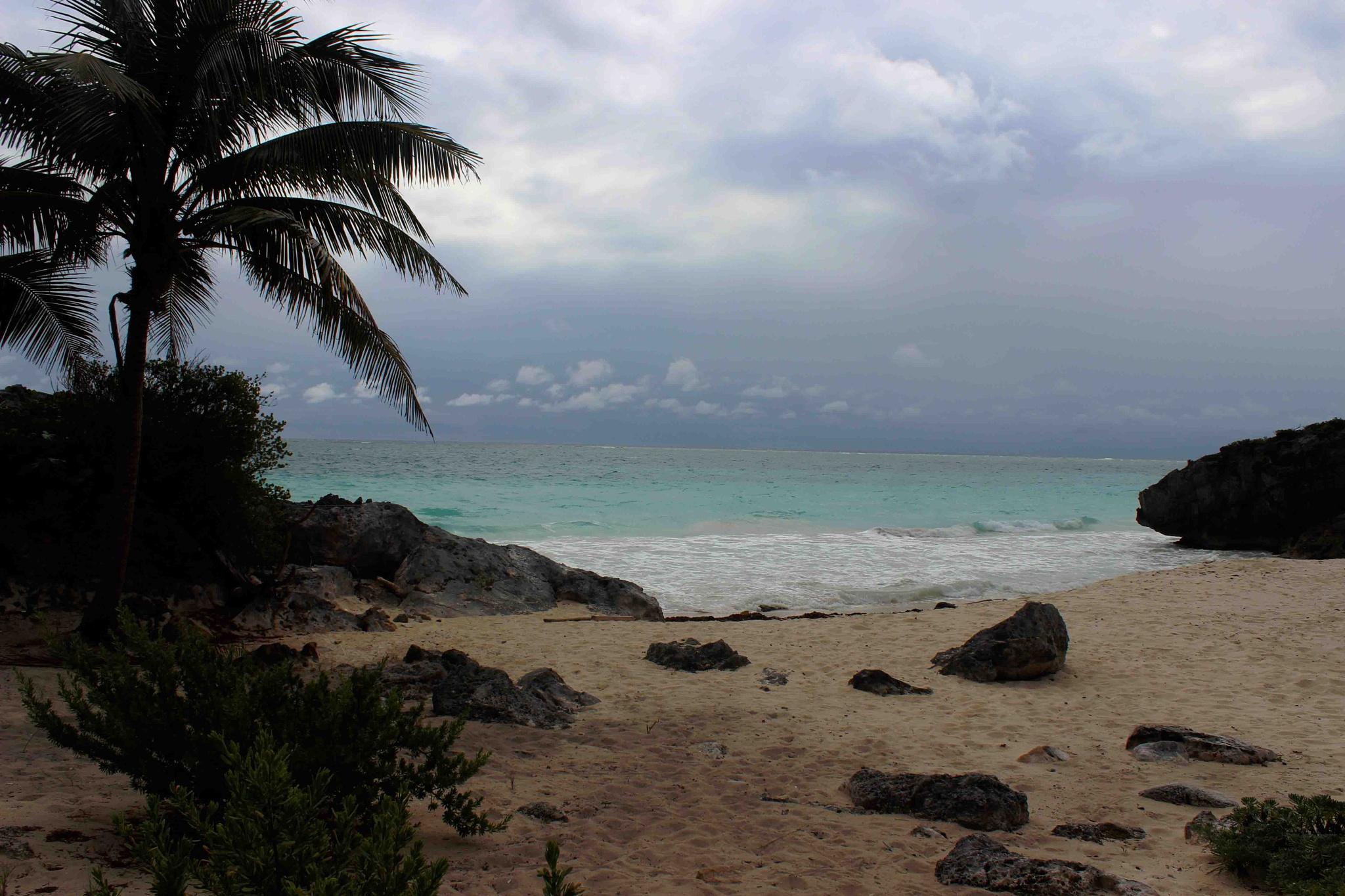 Photo in Landscape #beach #mexico #tulum